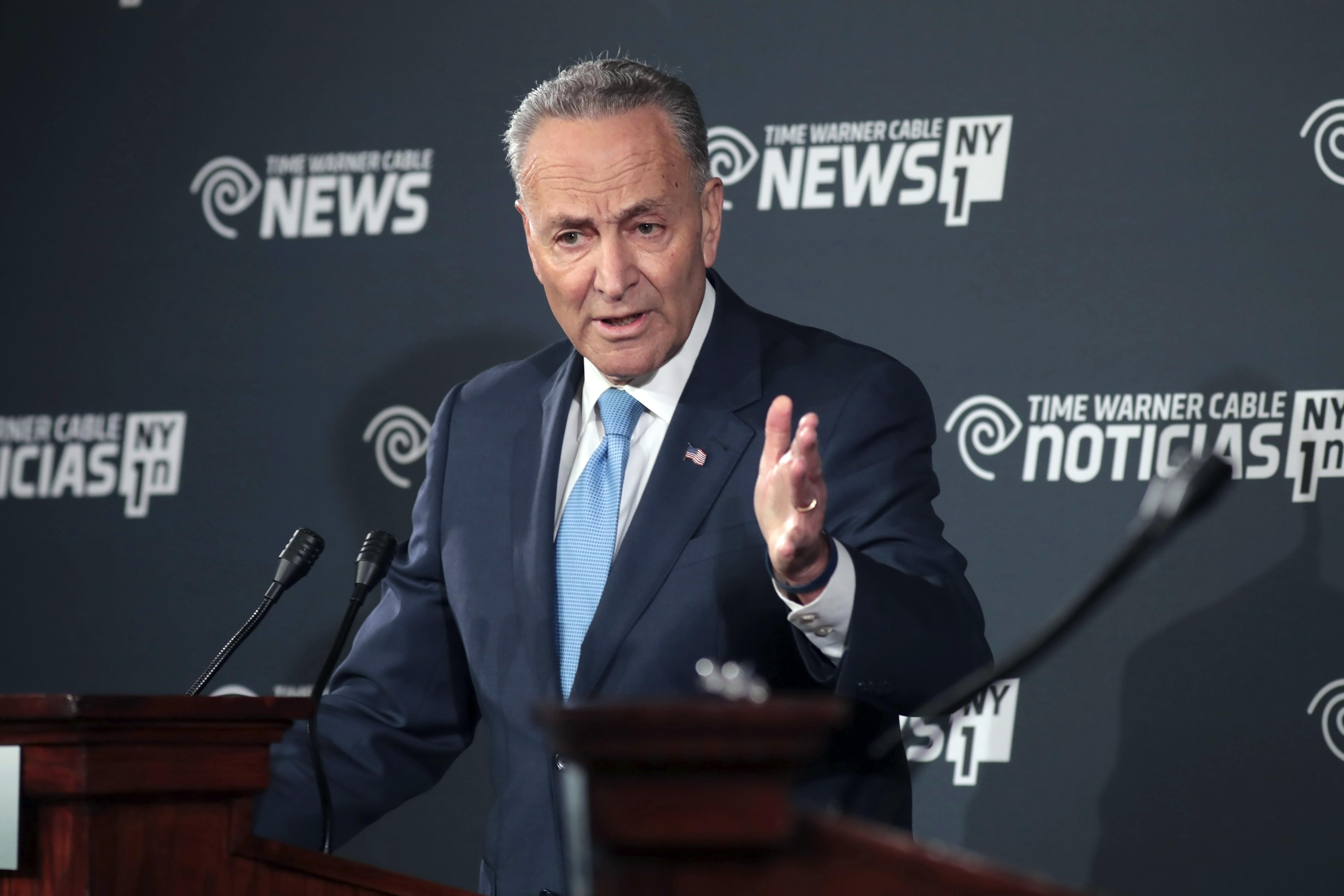 Senate 2016 Schumer