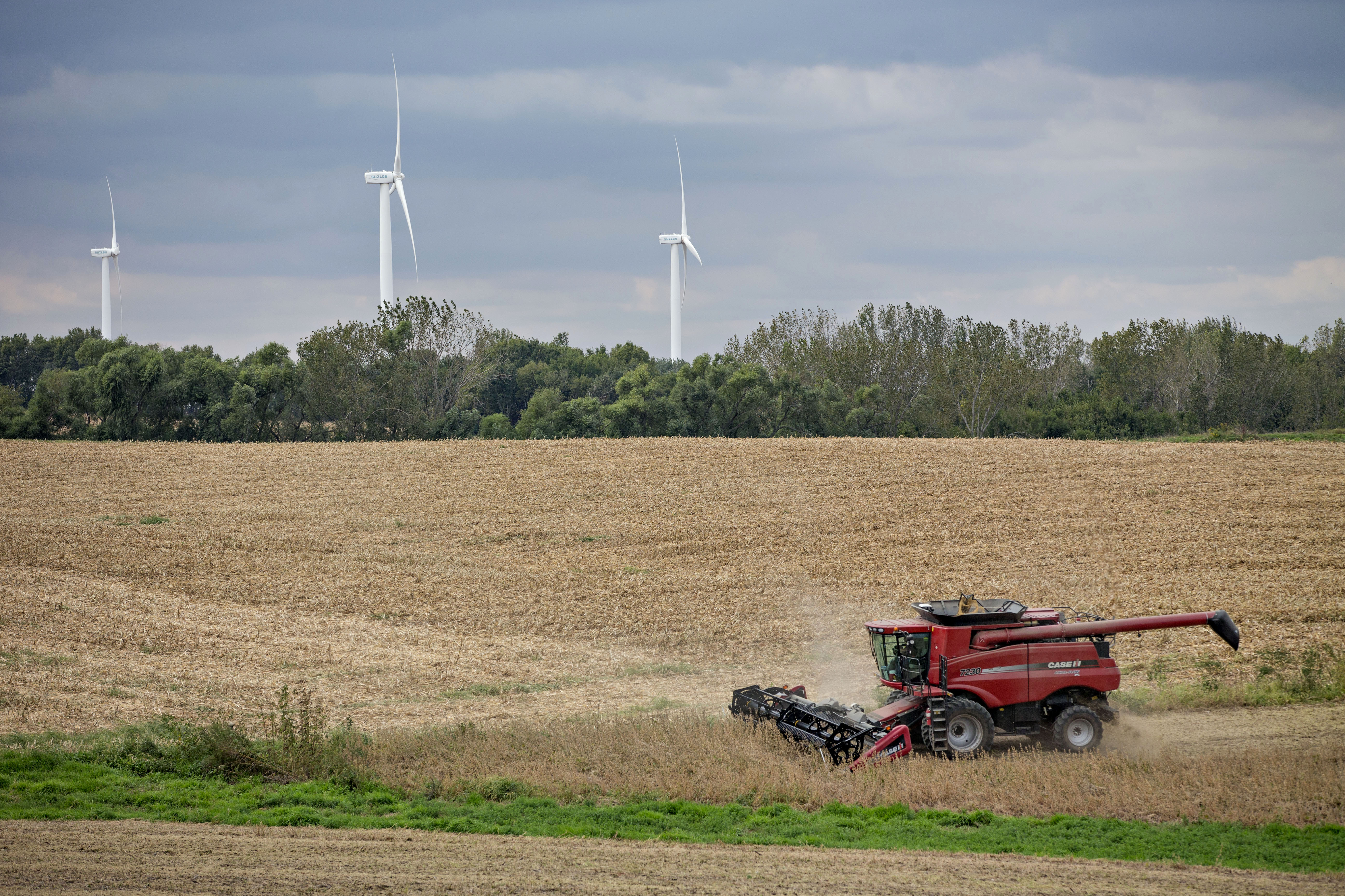 Soybean Harvest As Department Of Agriculture Releases Farm Prices
