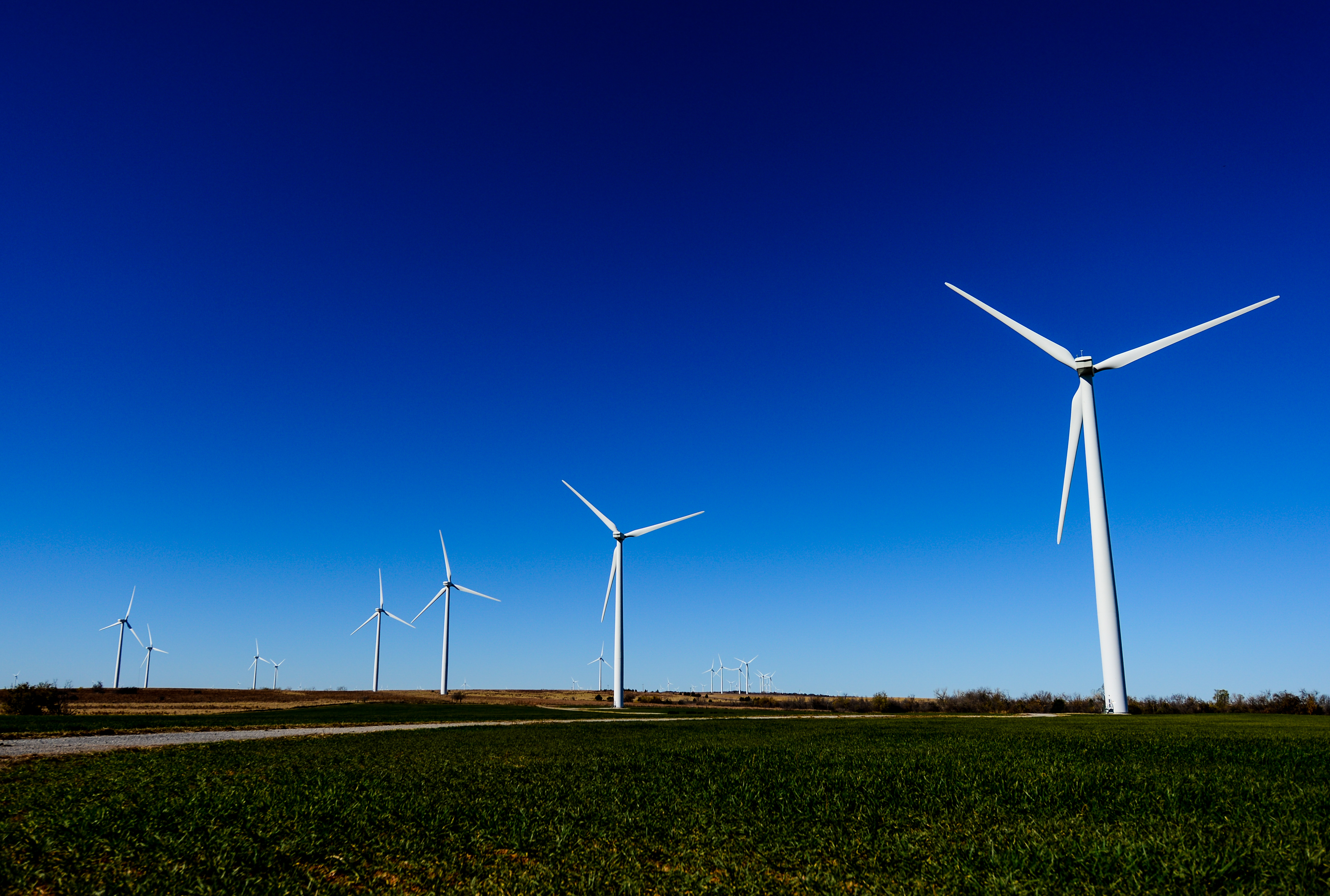 Google buys renewable energy from 20 wind and solar projects around the world.