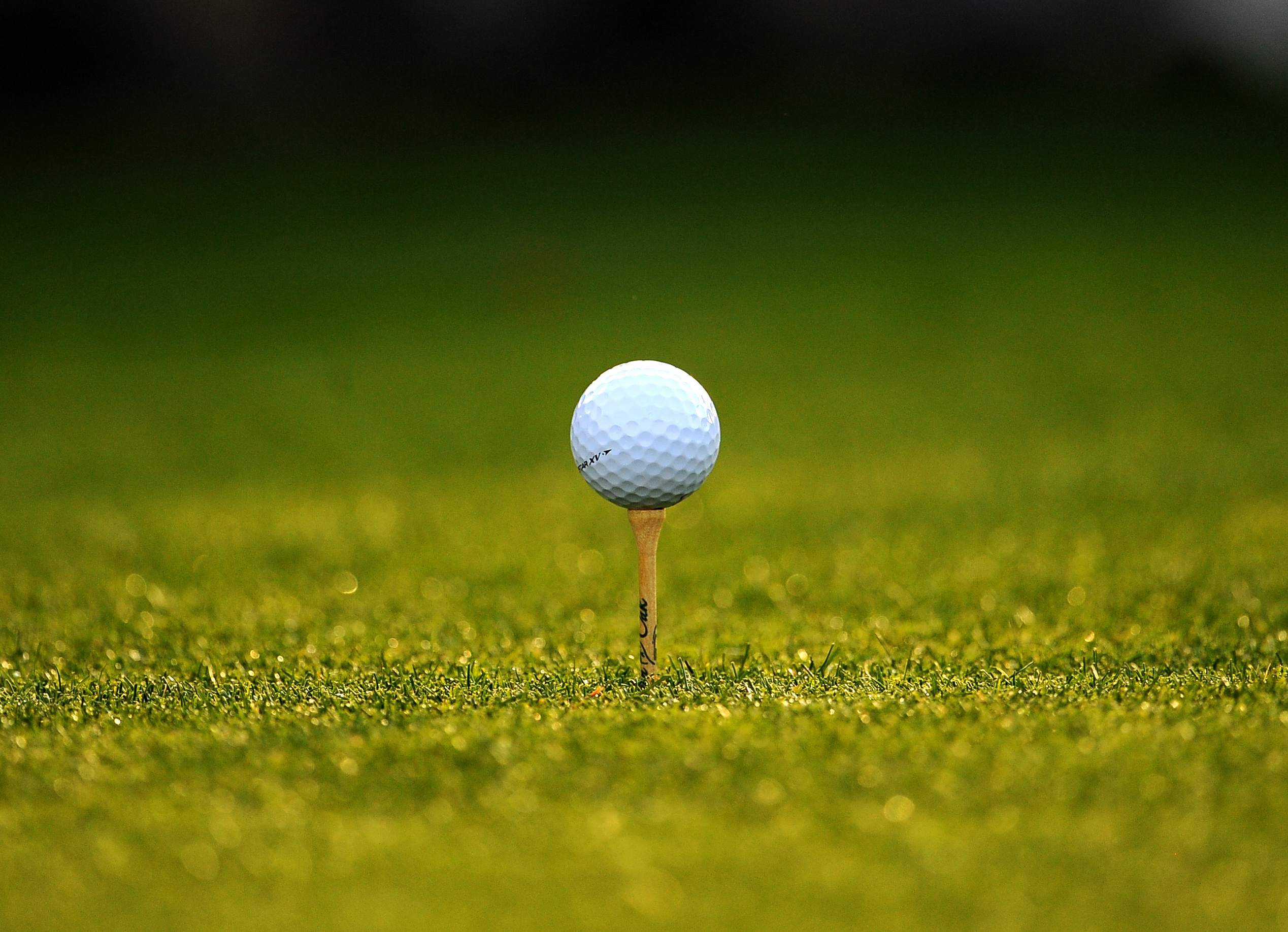 A golf ball sits on a tee during the second round of the Masters golf tournament at Augusta National Golf.