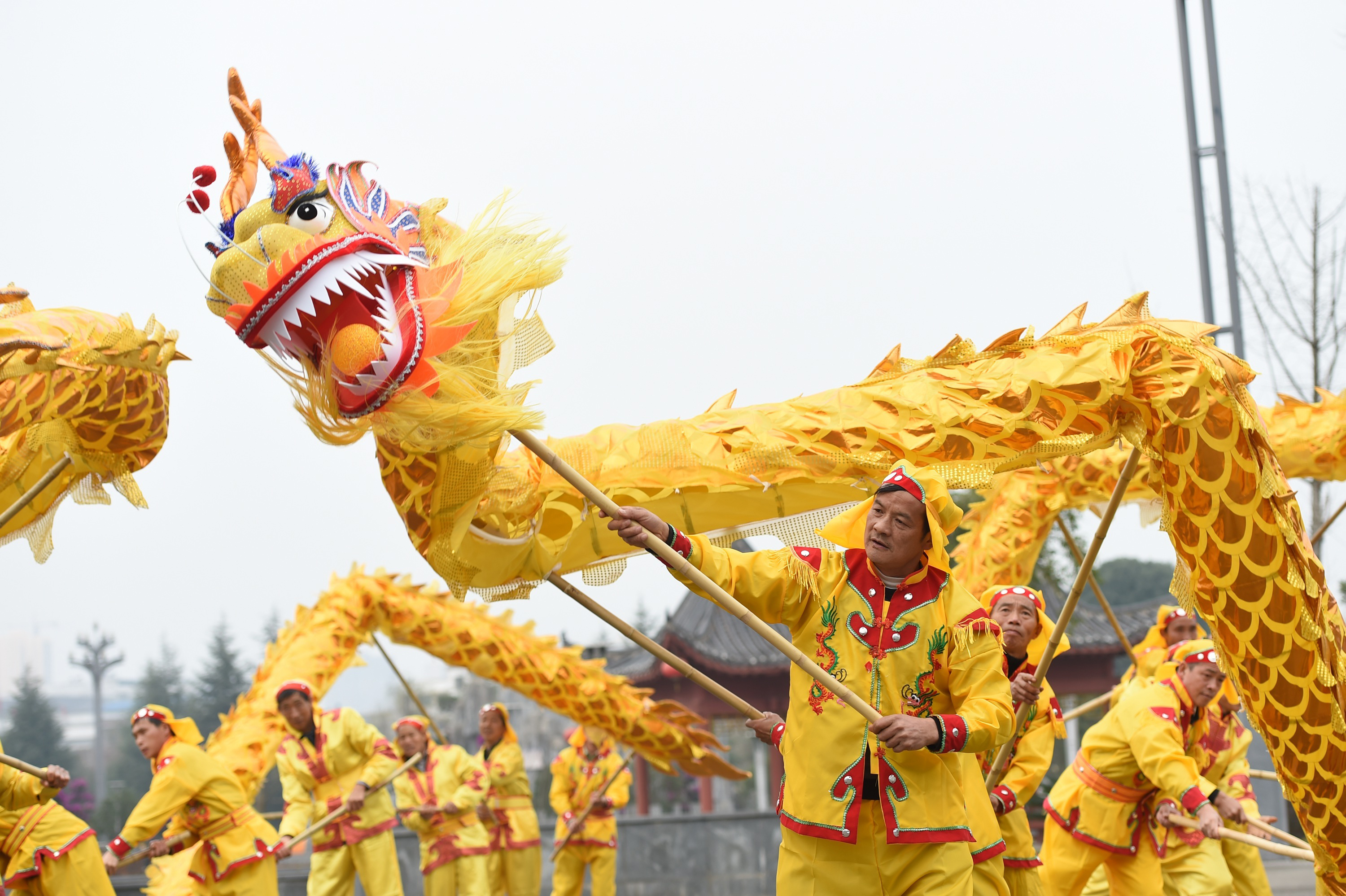 Dragon Dance And Lion Dance For Spring Festival