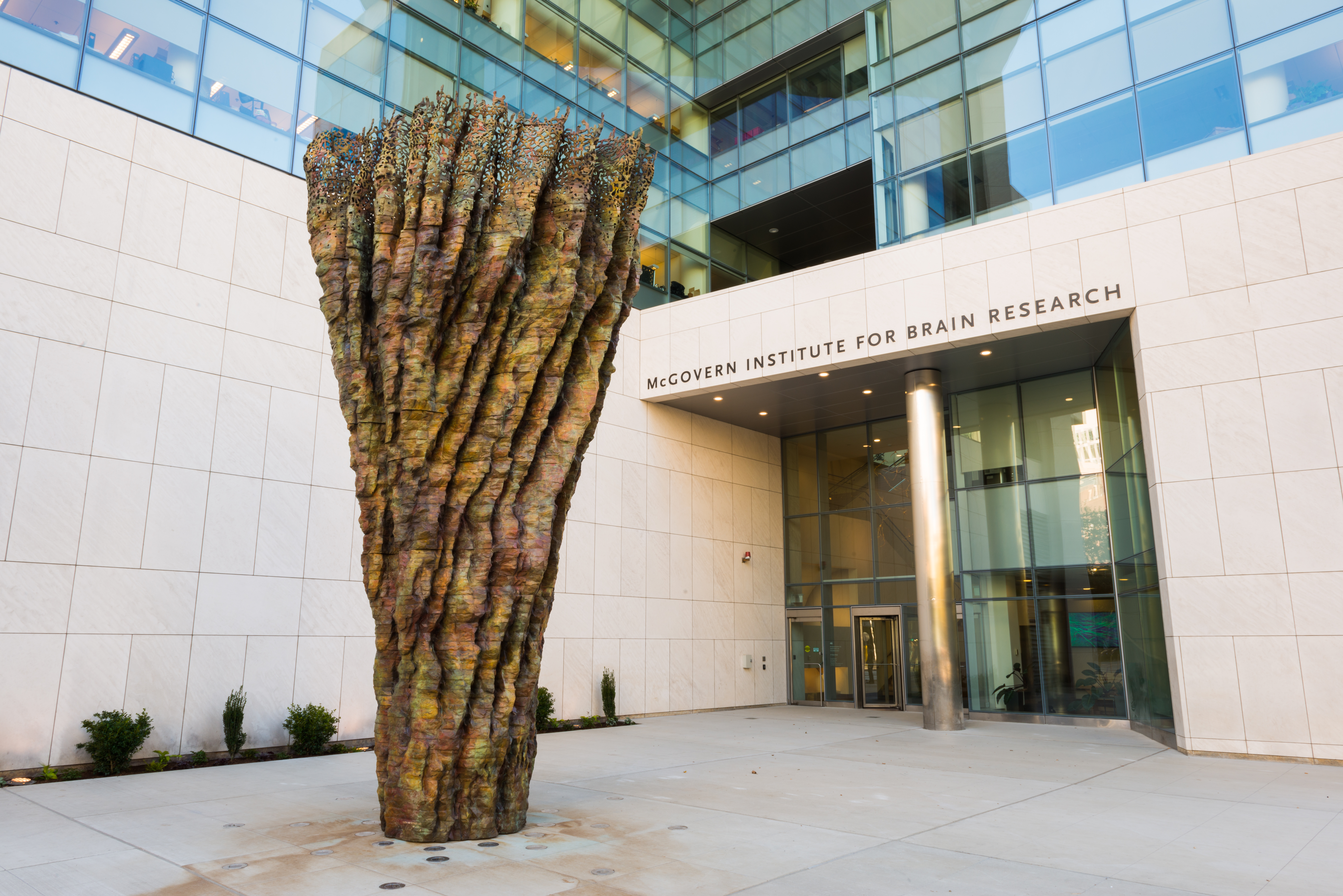 McGovern Institute for Brain Research at MIT