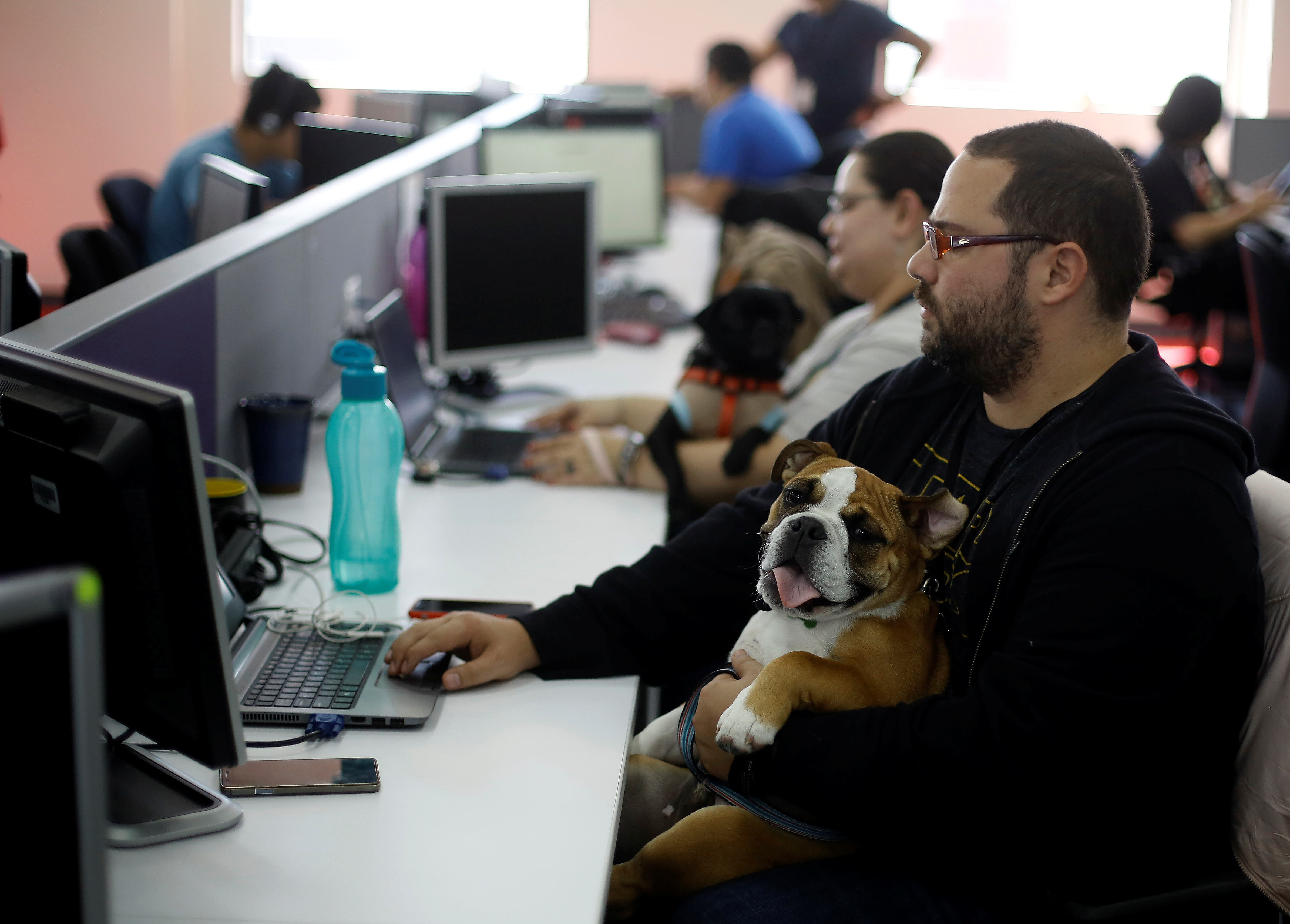 An employee of global professional services company Accenture works next to his dog, during a day the company offers to their employees to work accompanied by their pets in Heredia