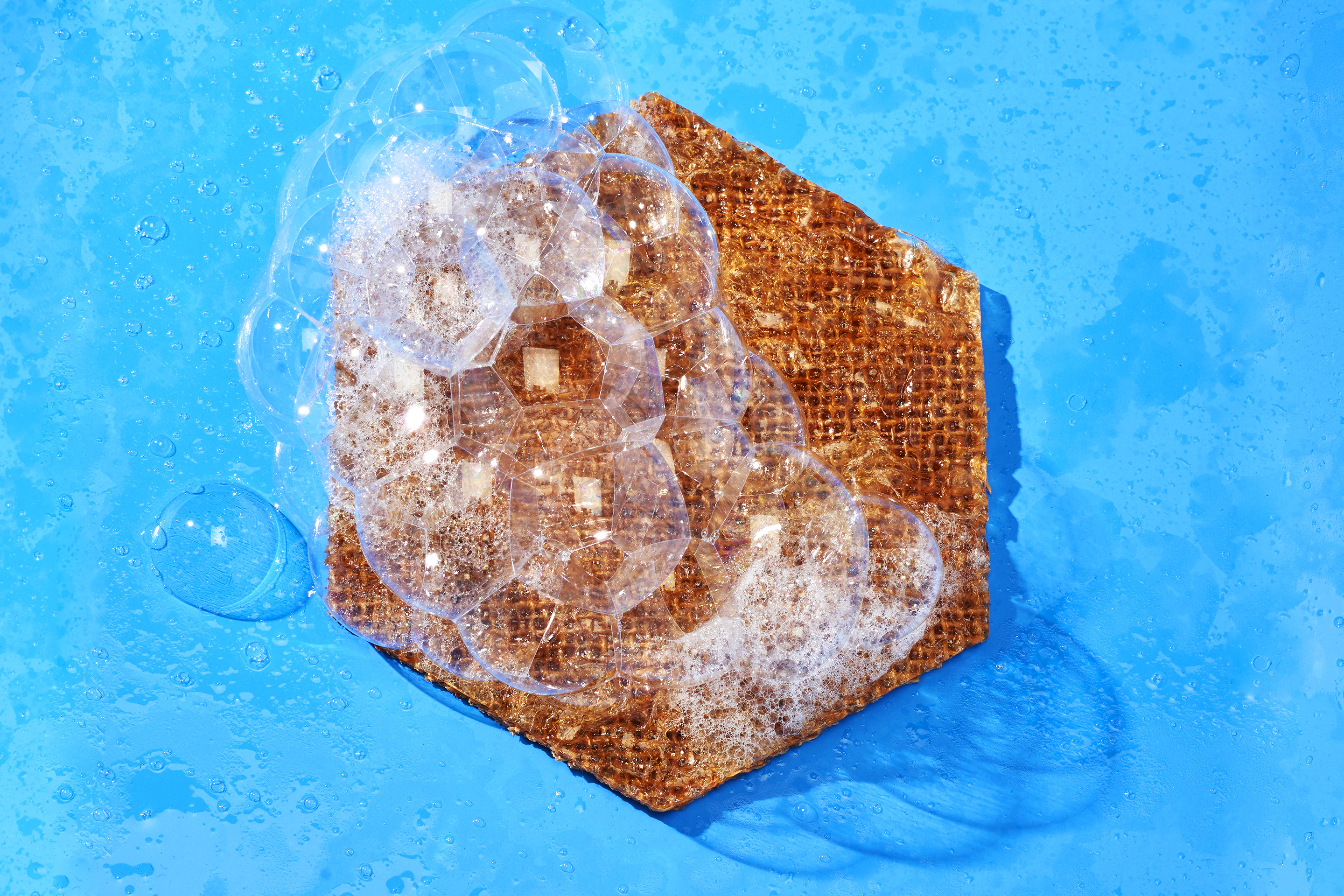 """Tidal Vision's """"Tidal Scrub"""" sponge is antimicrobial, biodegradable, and made from a material extracted from discarded crab shells."""