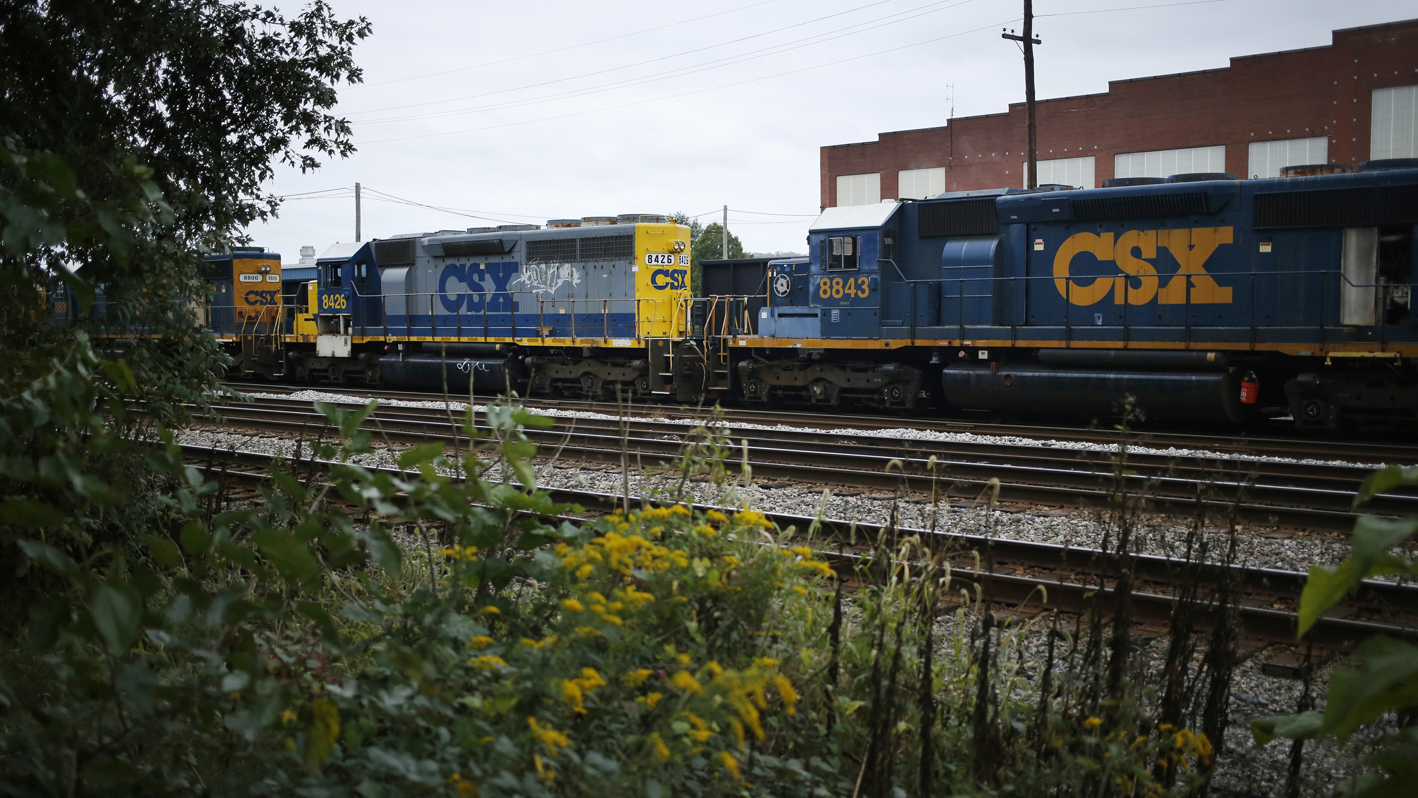 CSX Corp. Trains Haul Freight Ahead Of Earnings Figures