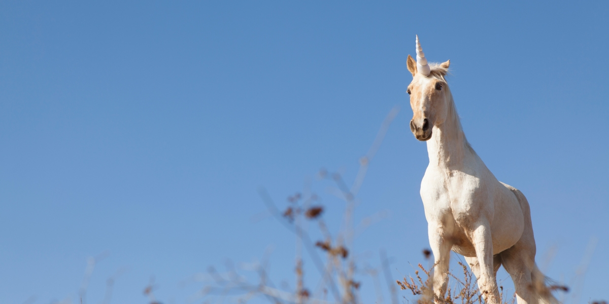 Forget About Unicorn Companies … Decacorns Are All the Rage in 2019: Term Sheet