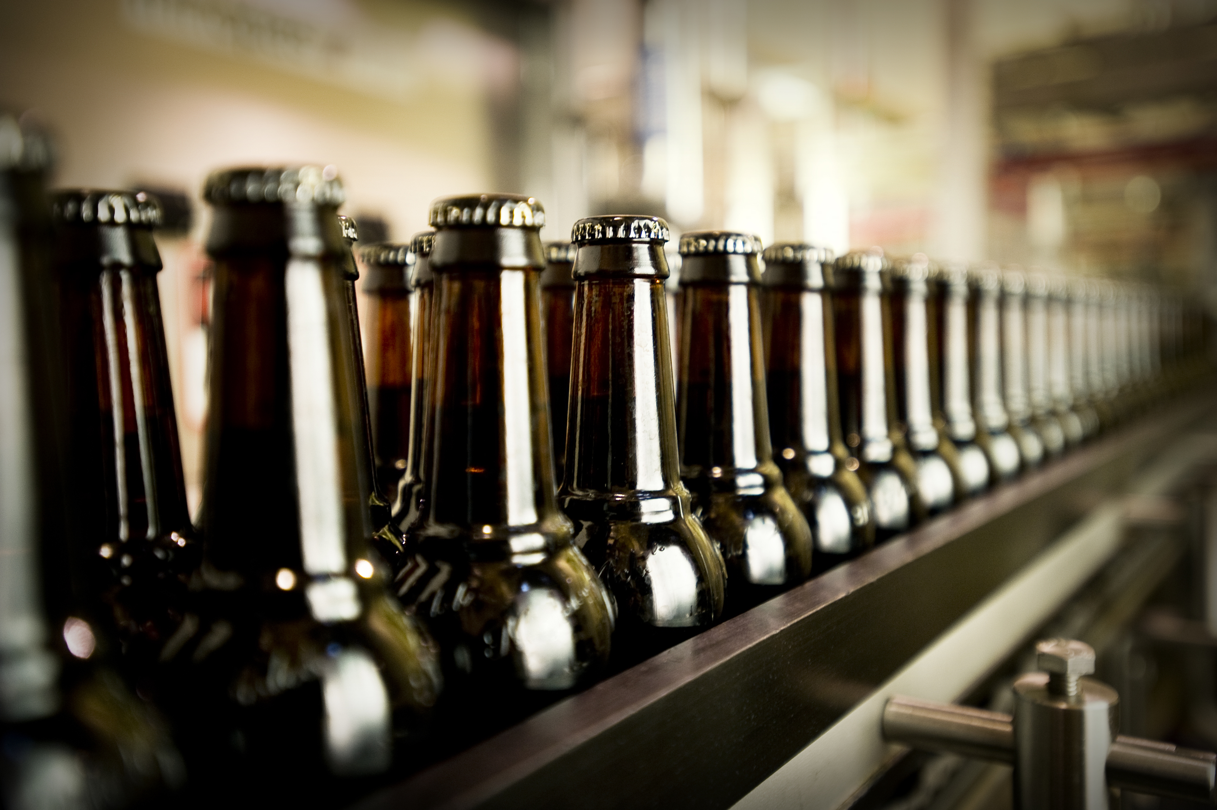Capped beer bottles in the filling room