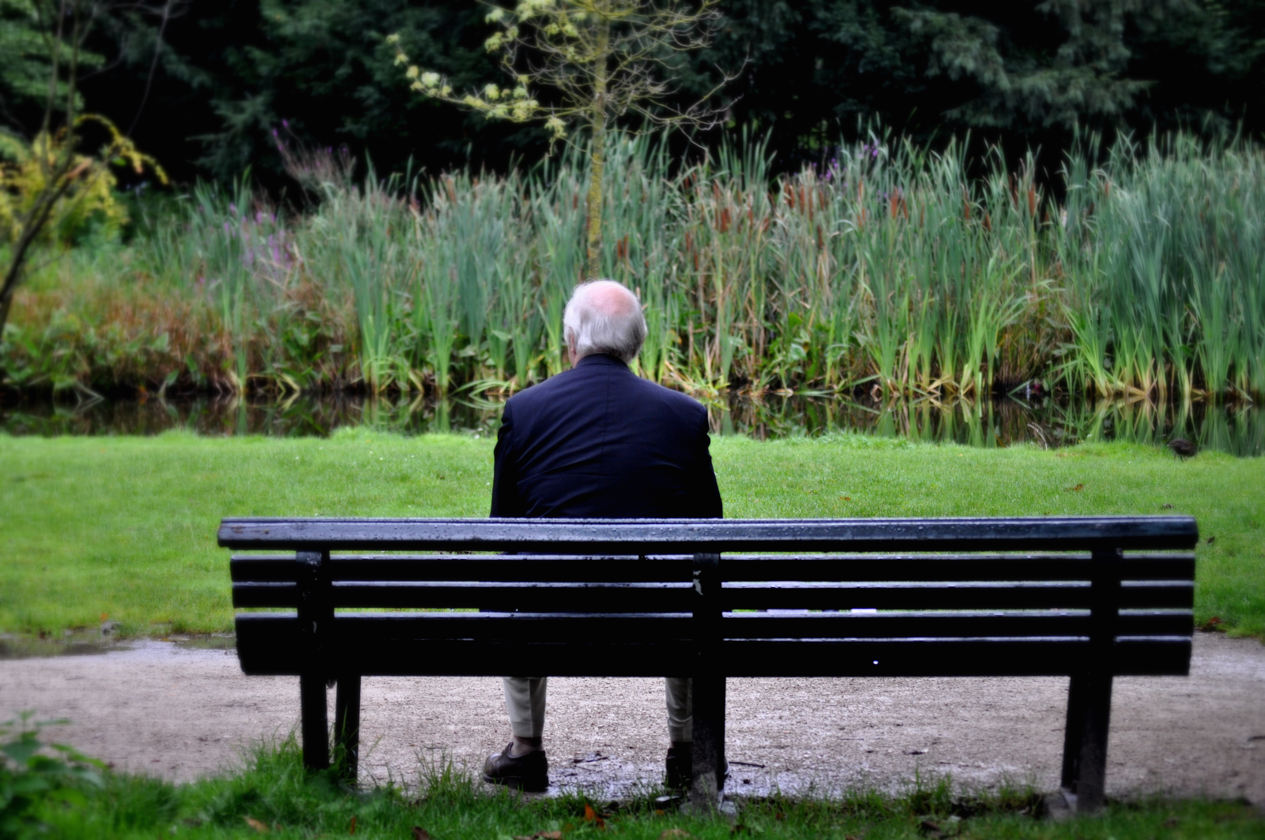 Senior man sitting on bench in garden