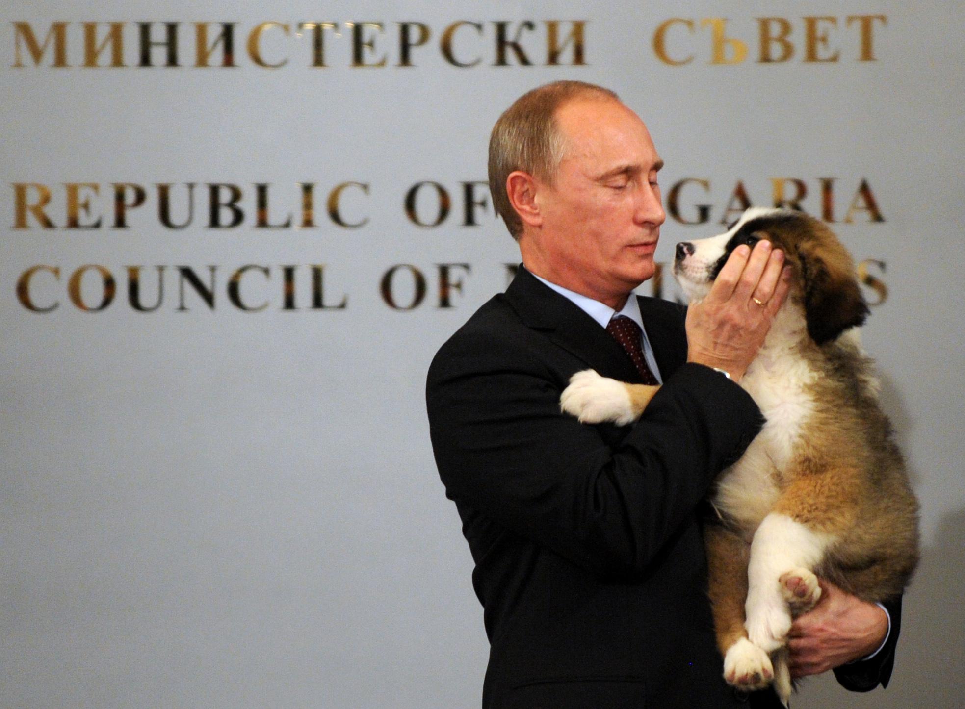 Russian Prime Minister Vladimir Putin hu
