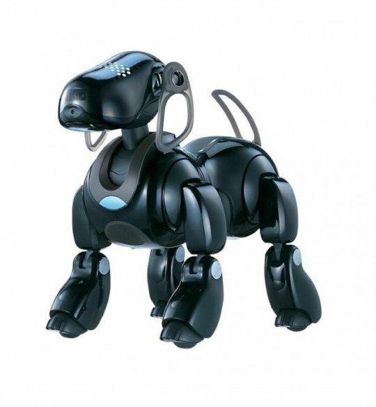 Sony's Aibo ERS-7, released in 2003 at a price of $1,600.