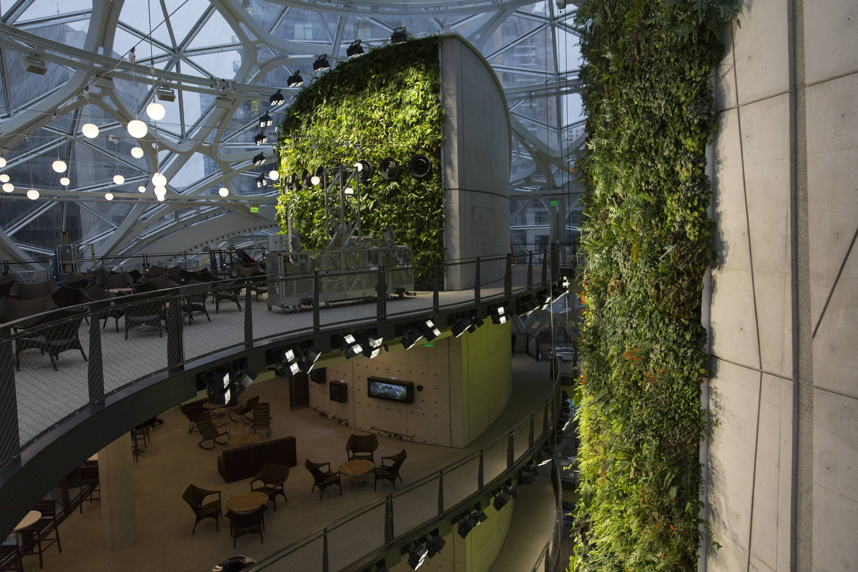 Inside Amazon S Spheres Photos Of The New Seattle Rainforest