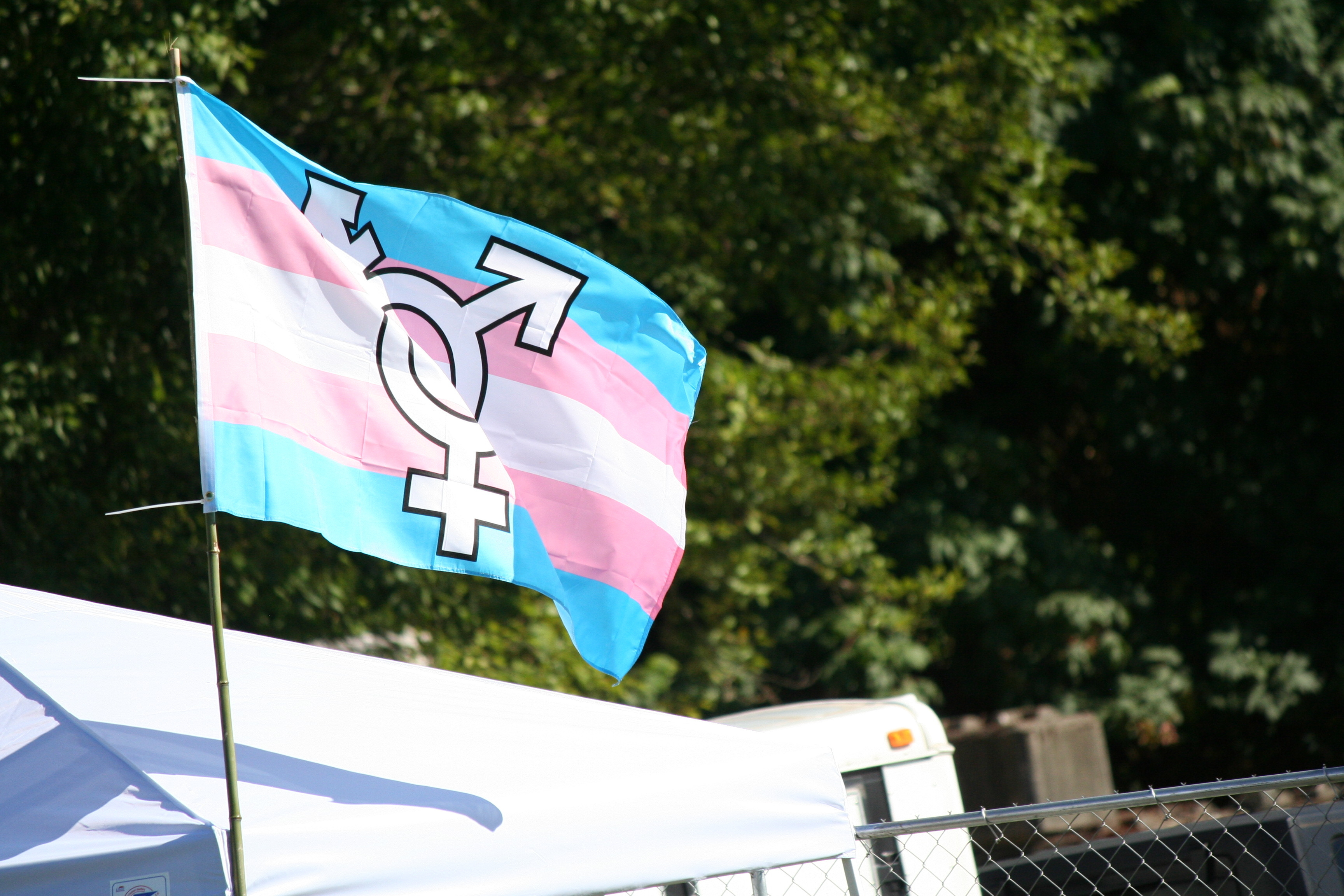 Transgender Flag Waving