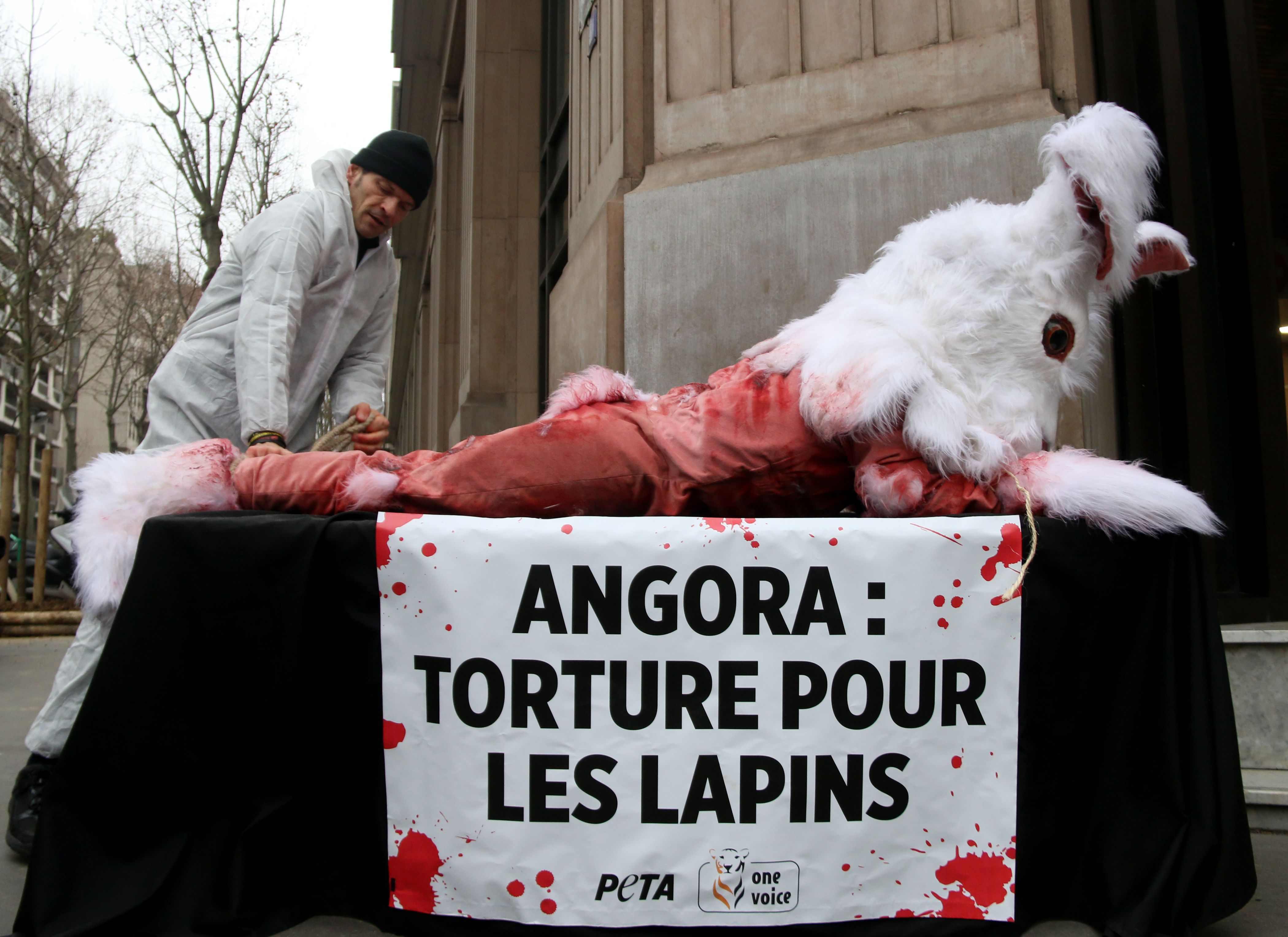 """Activists from PETA display a banner that translates as """"Angora: Torture for rabbits."""""""