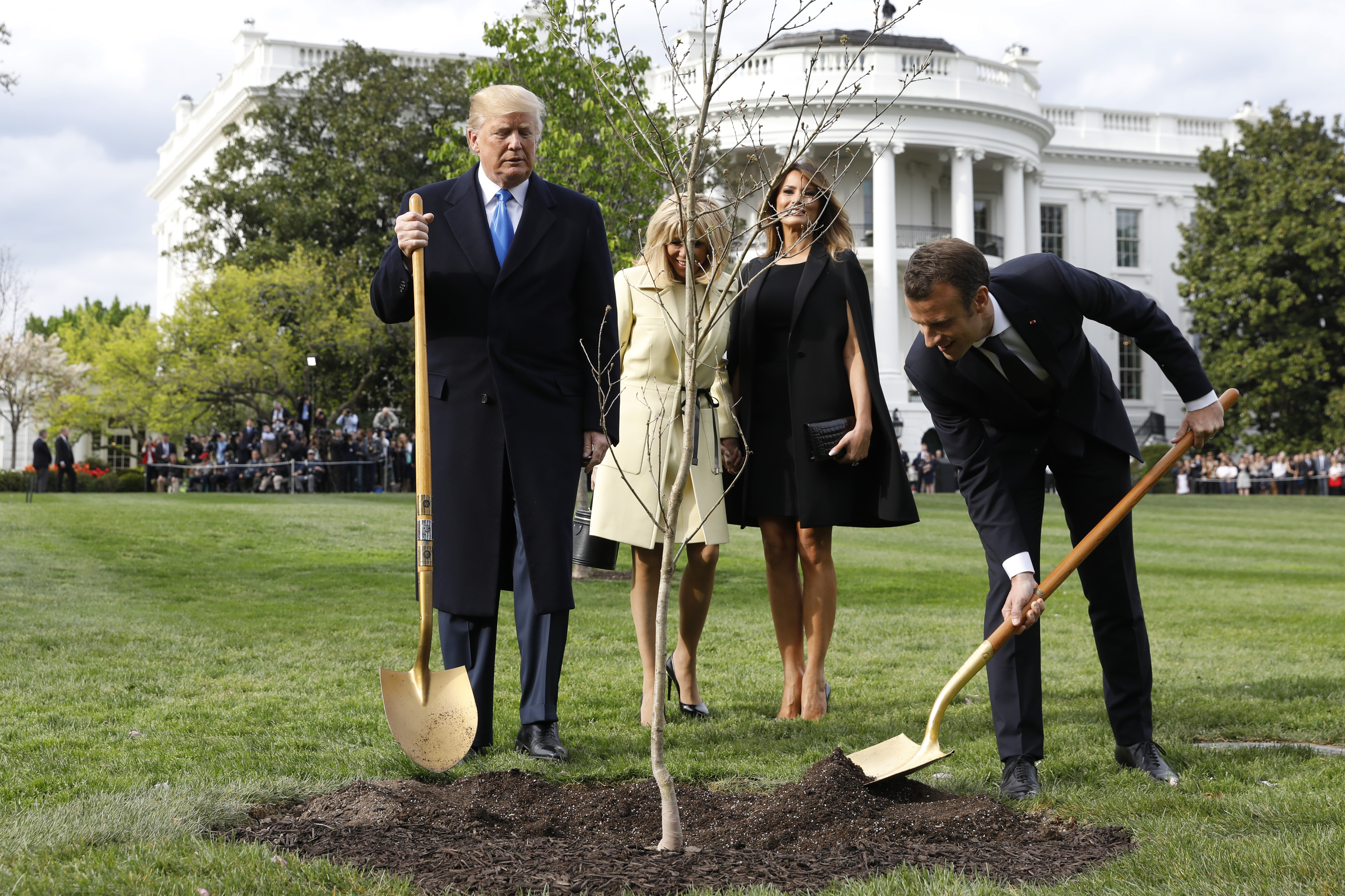Trump and Macron shovel dirt onto sapling on White House lawn