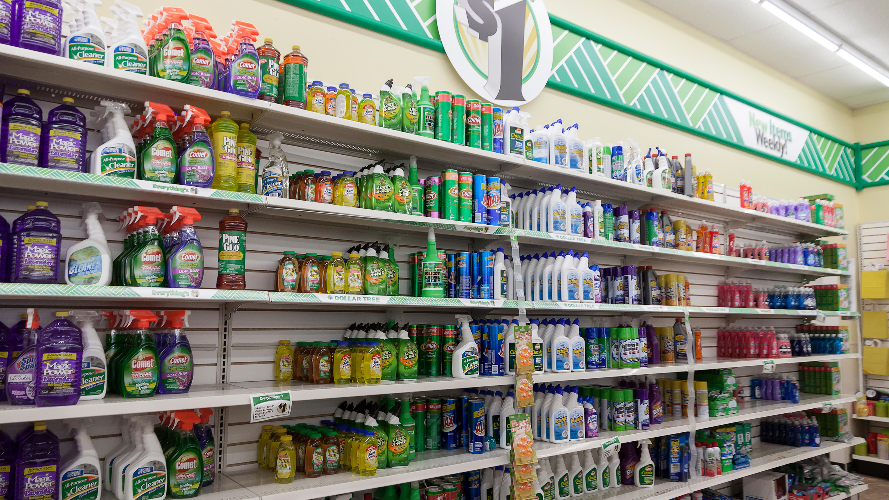 Cleaning products for sale on shelves in a Dollar Tree store in Fort Lauderdale, Florida, USA.