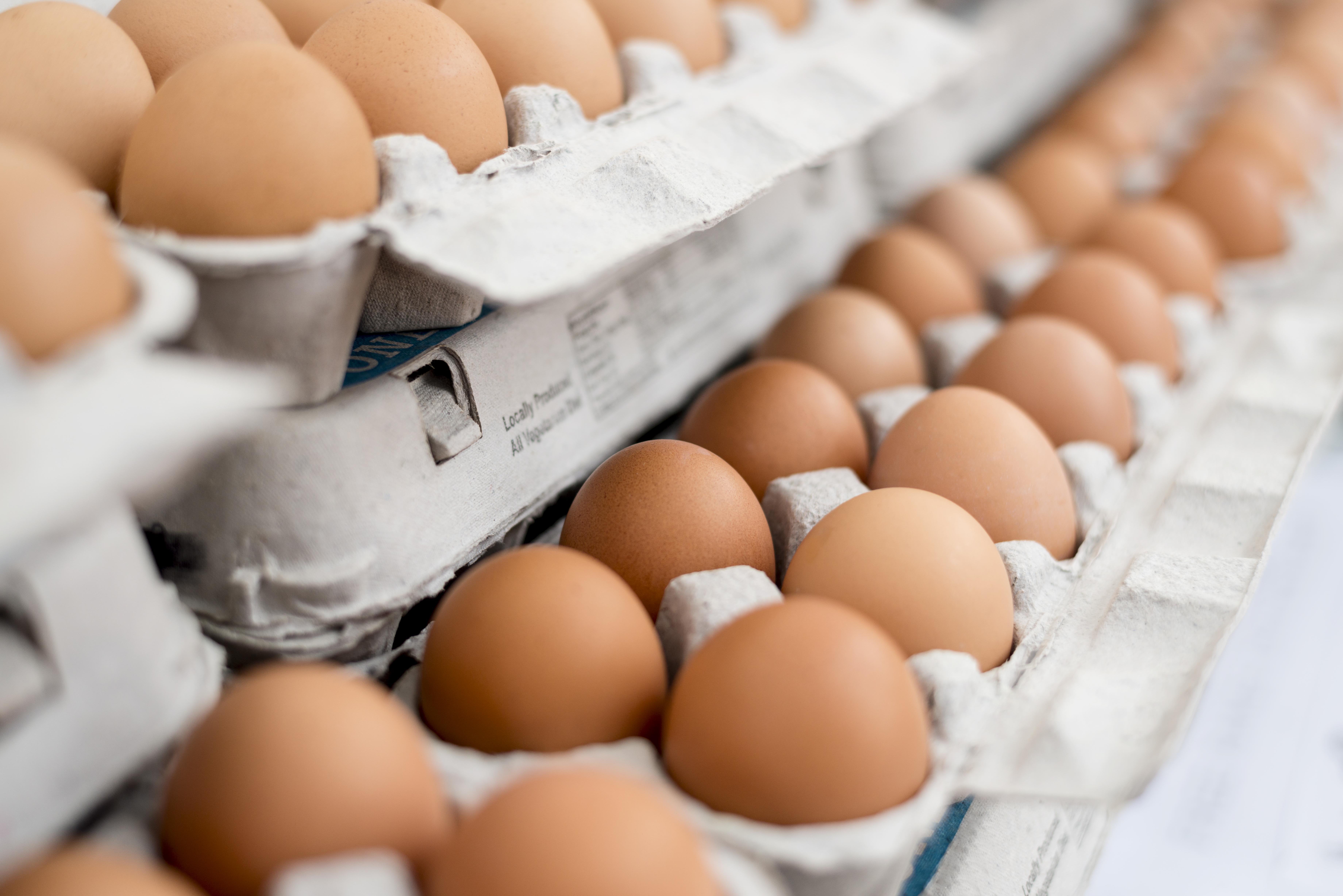 Salmonella egg recall
