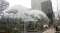 Inside Amazon's Giant Spheres, Where Workers Will Chill In A Mini Rainforest