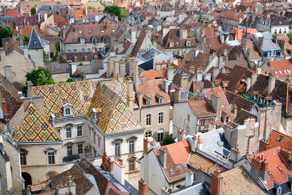 Rooftops of Dijon.