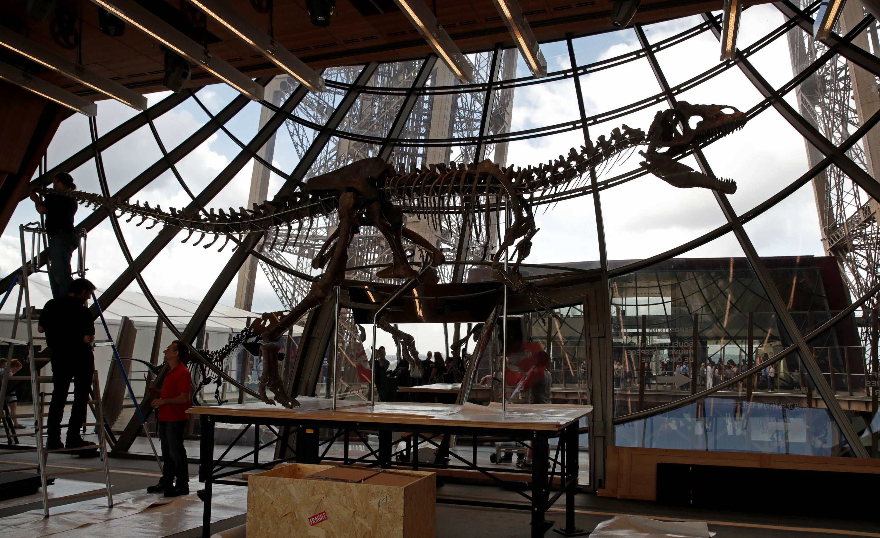 Workers reconstruct dinosaur fossil at the Eiffel tower, in Paris