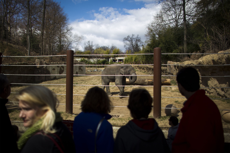 national-zoo-washington-dc-security