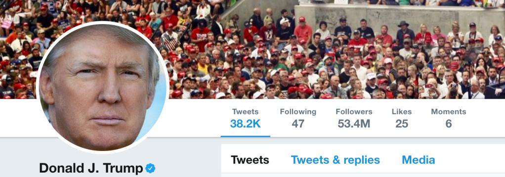 Trump's Twitter following July 11
