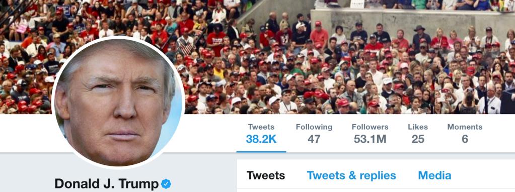 Trump's Twitter following July 13