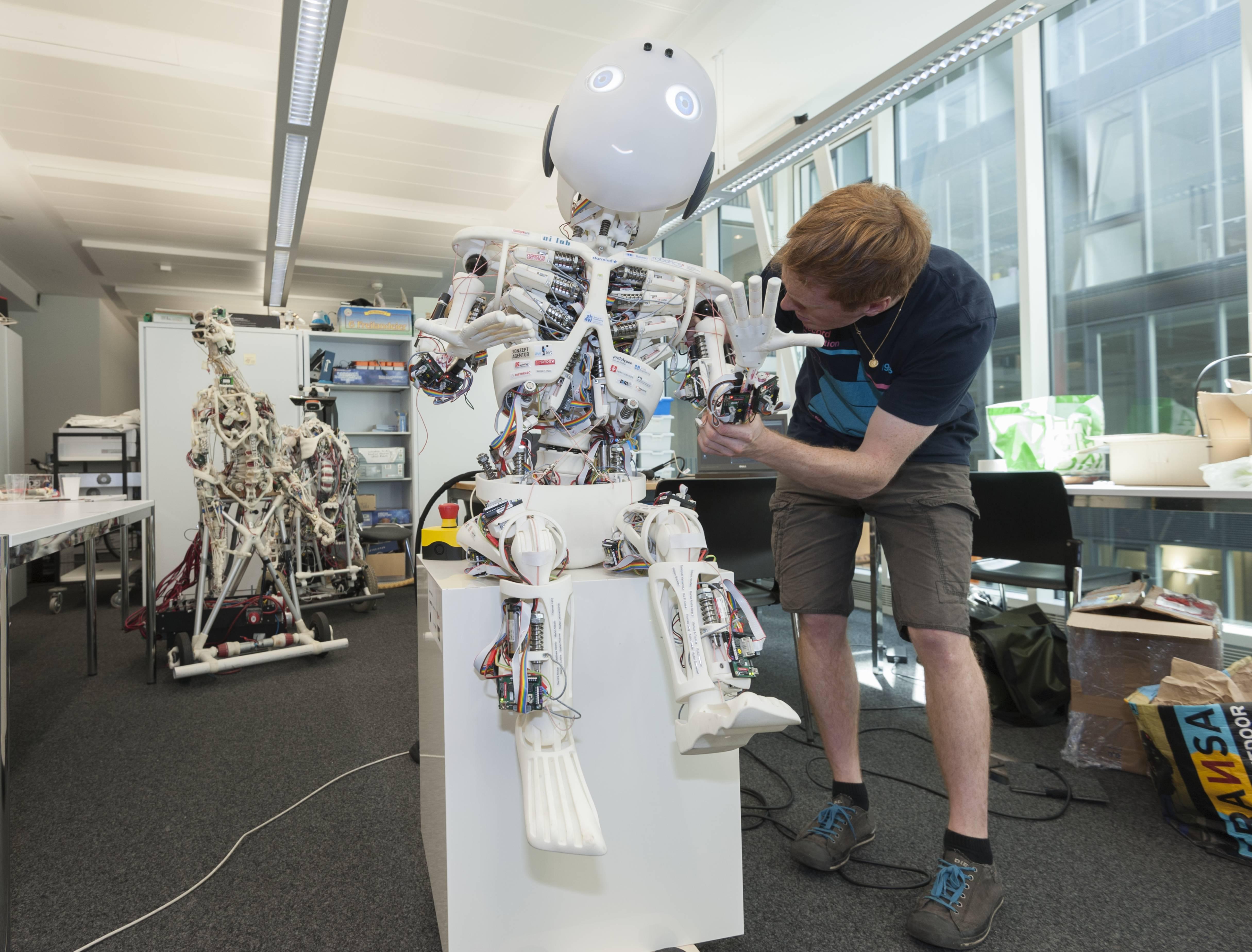 ROBOY humanoid robot