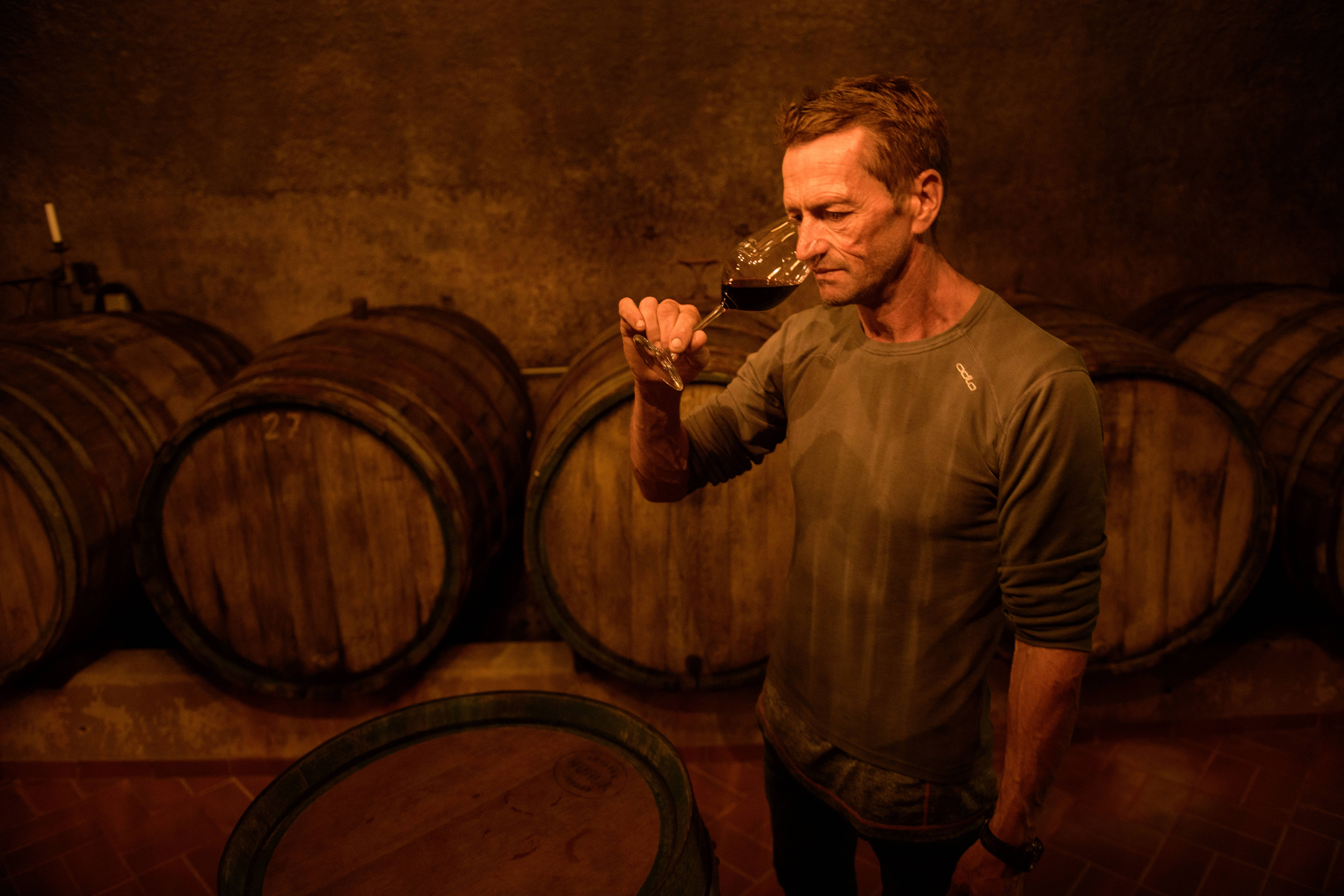 Winemakers Harvest Grapes In Mosel Region
