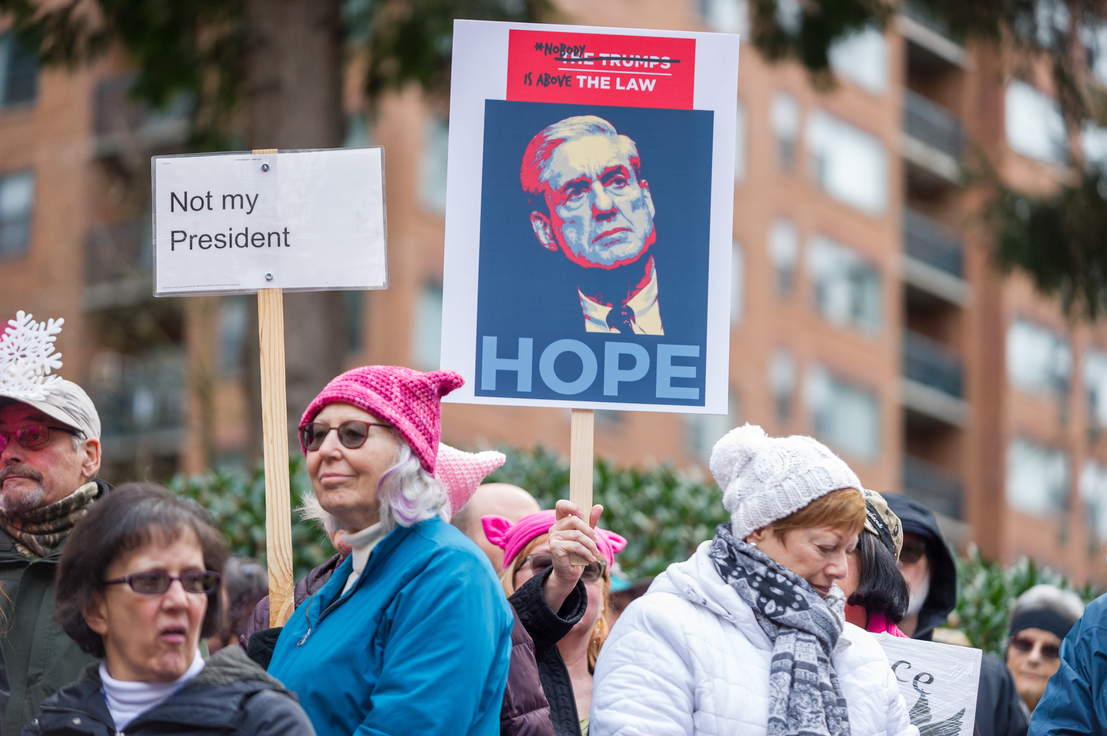 NEWS: JAN 20 Portland's National March for Impeachment