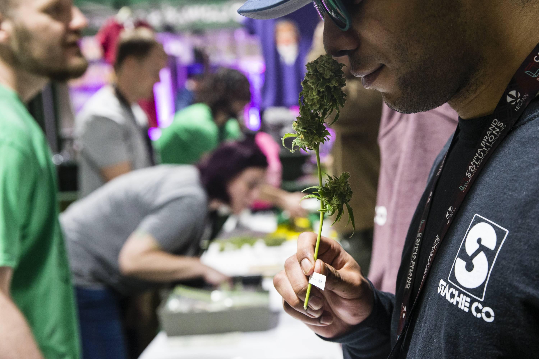 4th Annual New England Cannabis Convention