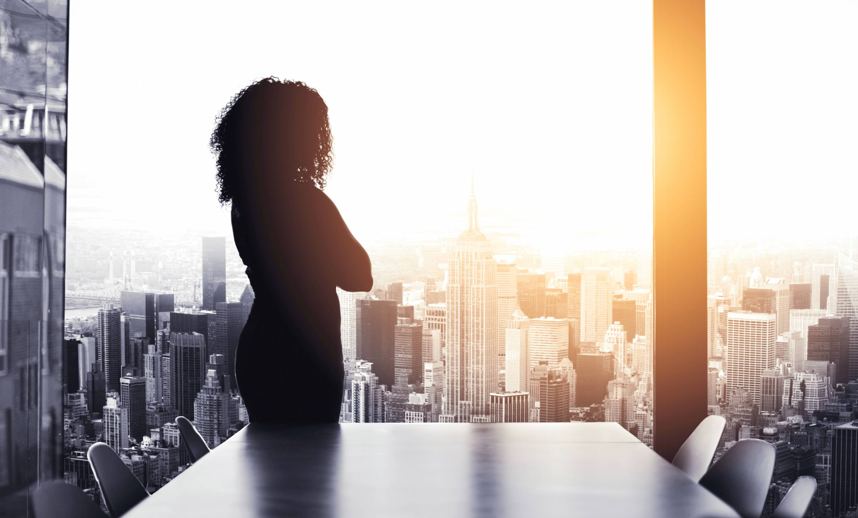 Silhouetted shot of a young businesswoman.