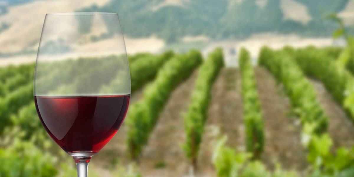 Harvard's $39B Endowment Is Reportedly Buying Up California's Vineyards?and Their Water Rights