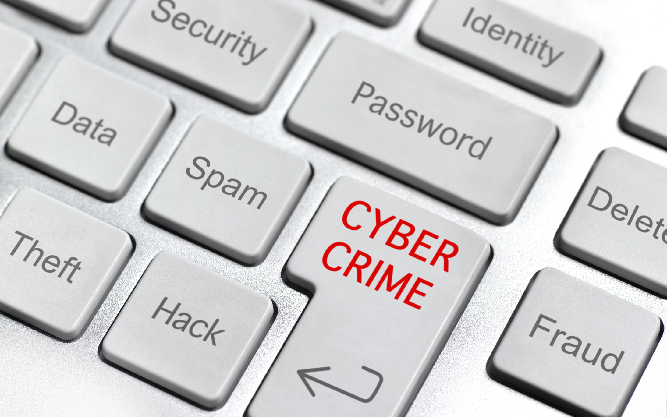 CYBER CRIME ON THE INTERNET