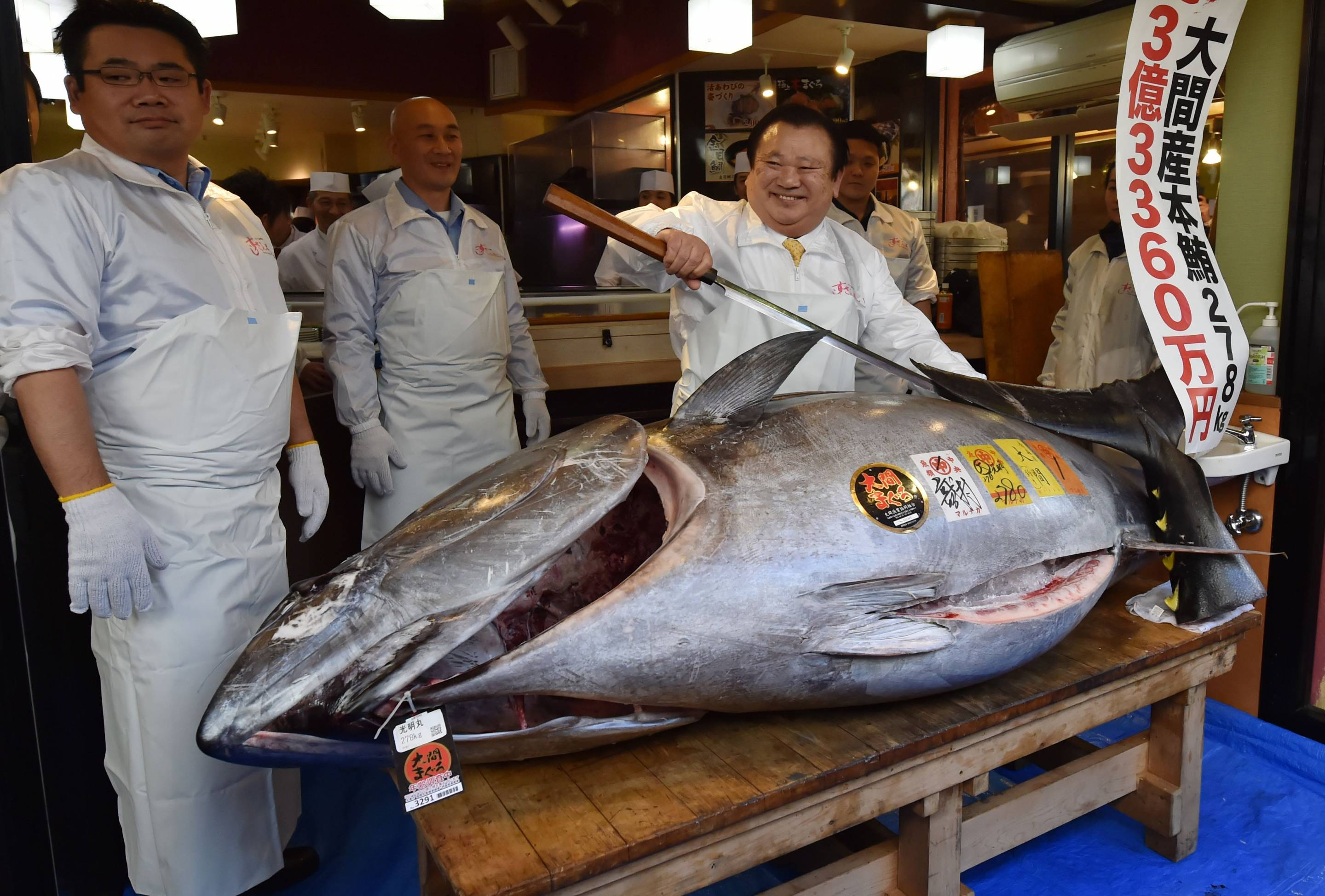 Record-Setting Tuna Auction