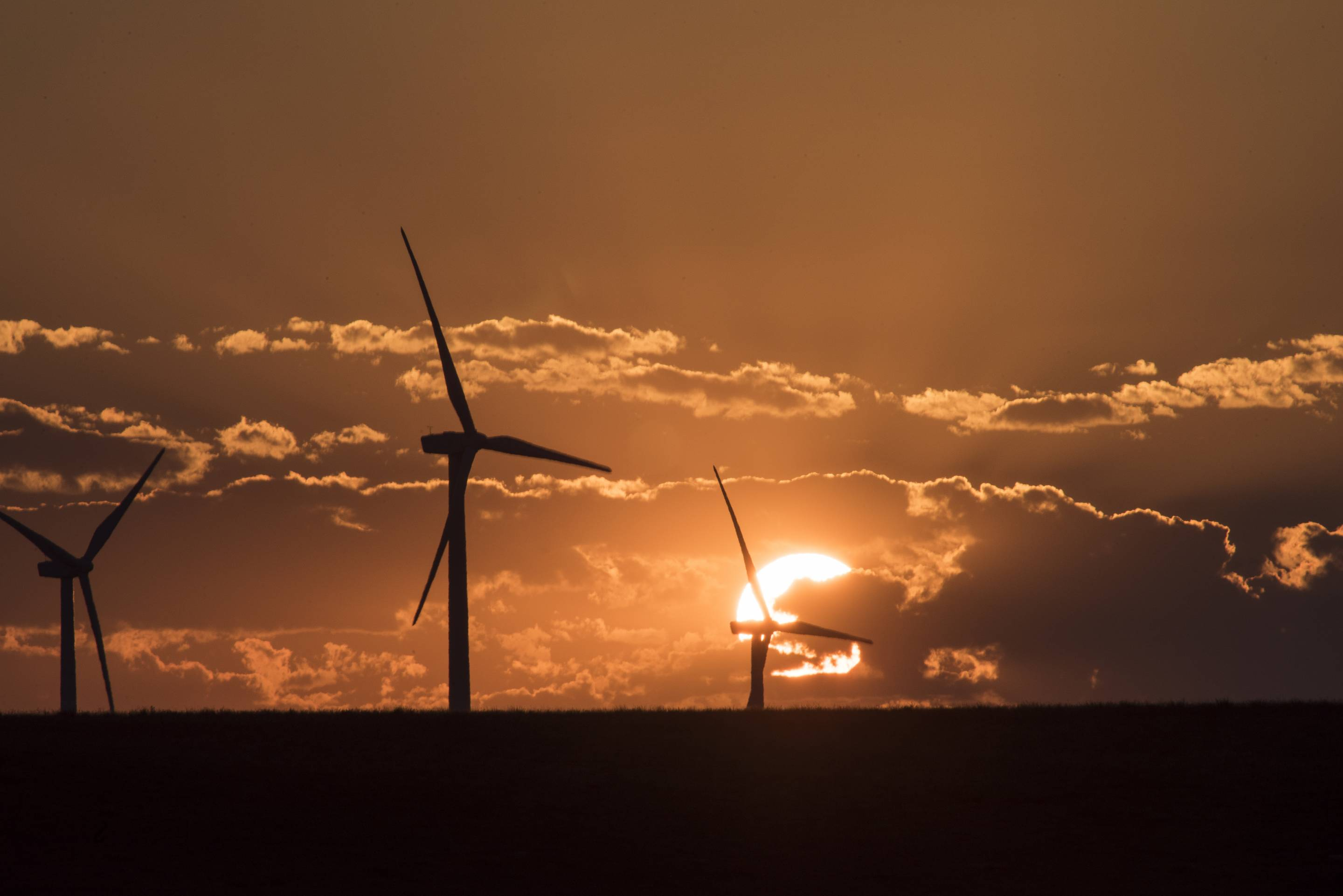 Rim Rock Wind Farm - Kevin, Montana