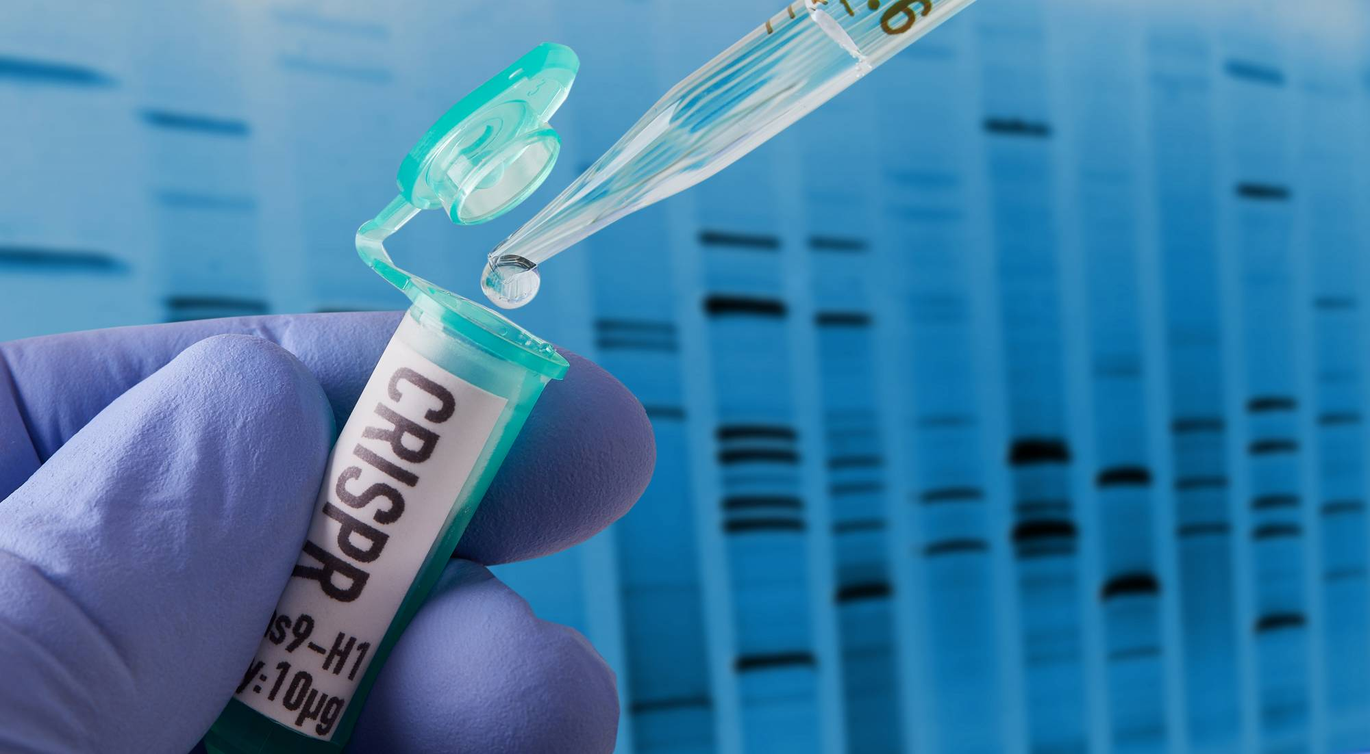CRISPR research in laboratory