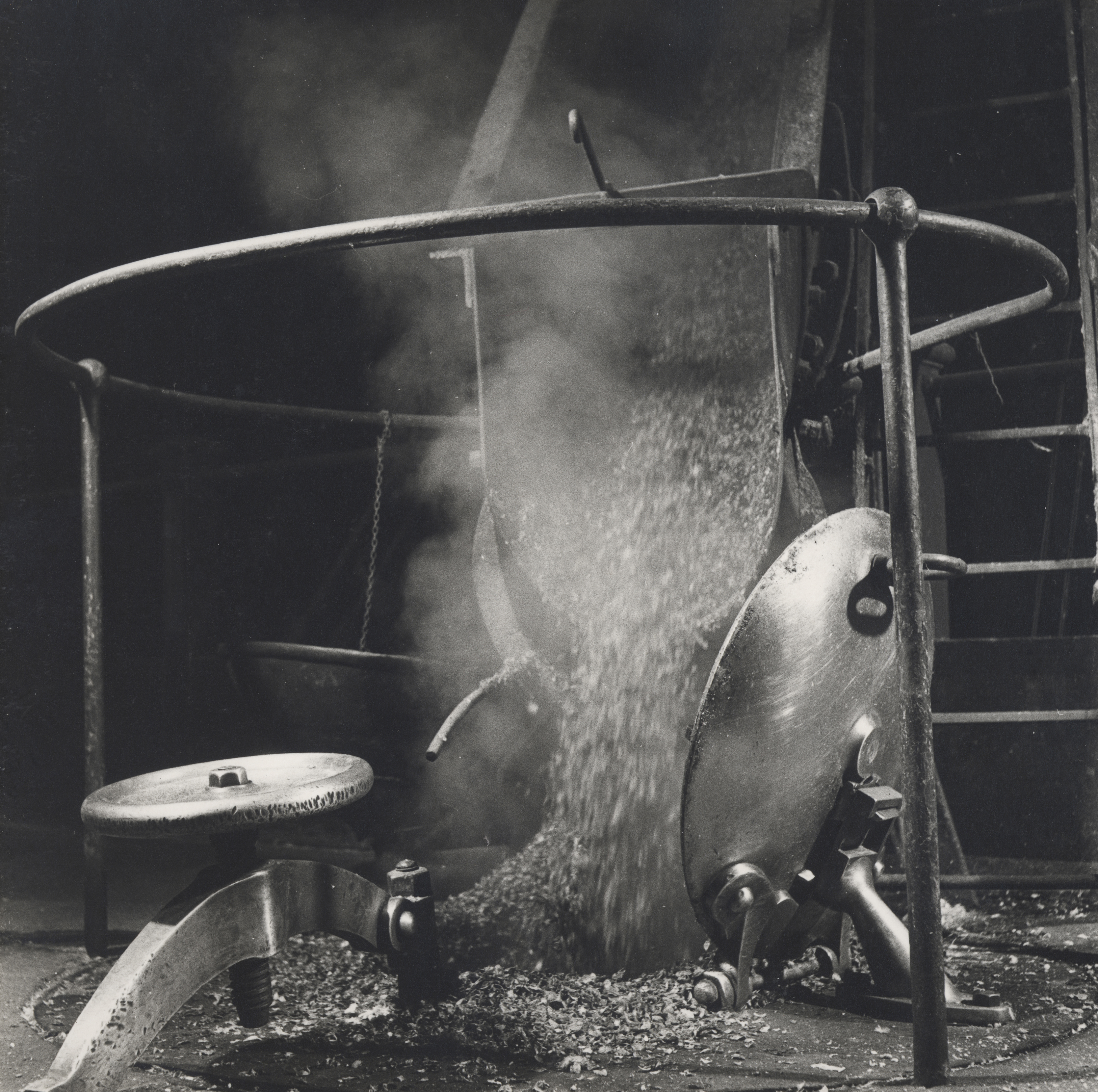 Adding hops in the Number 2 Brewhouse circa 1948.