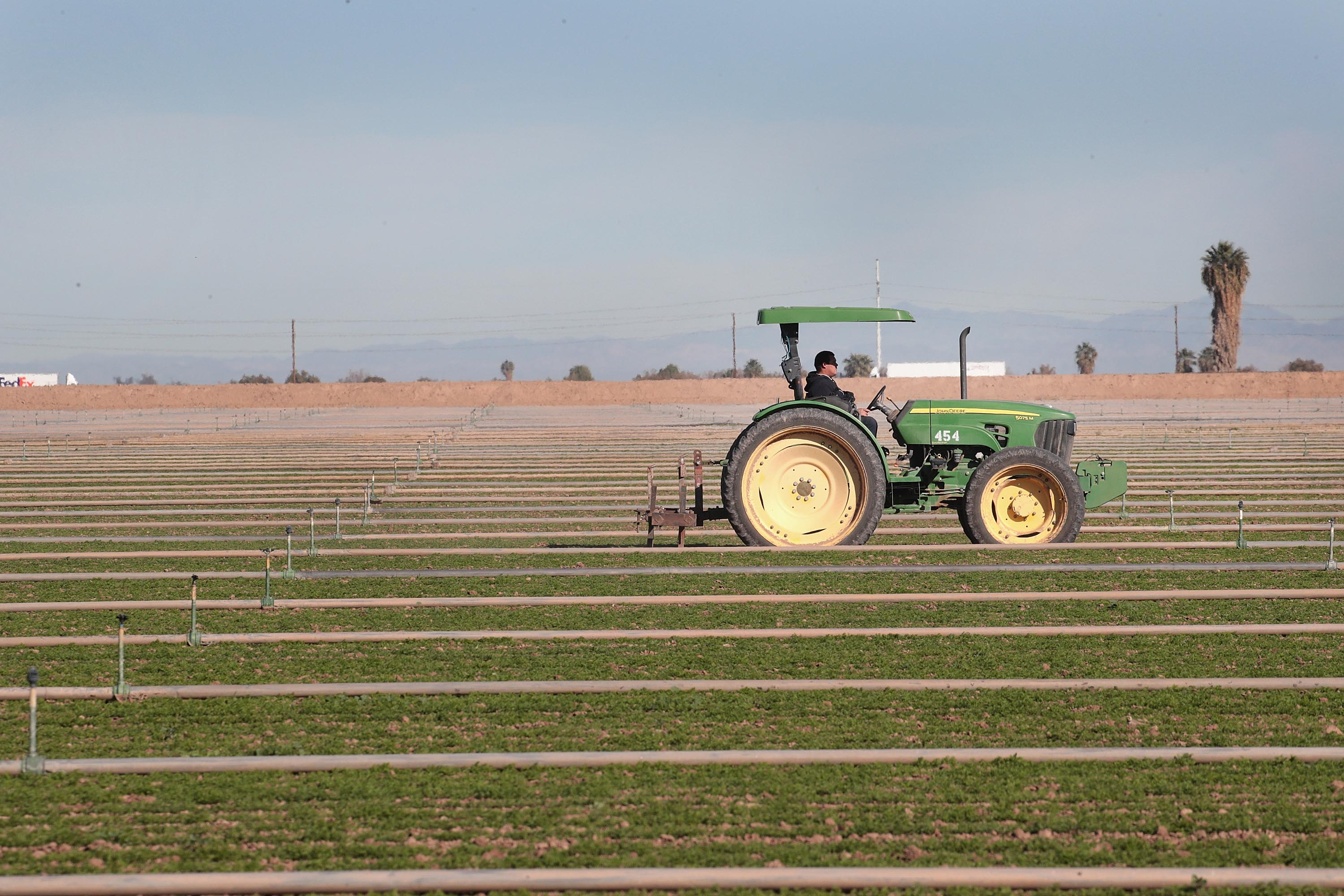 A farm worker drives a tractor through his field