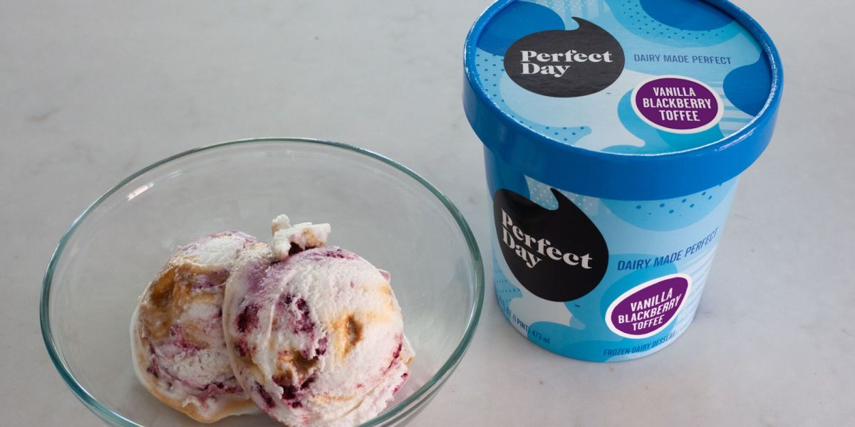 The First 'Animal-Free' Ice Cream Hits the Market