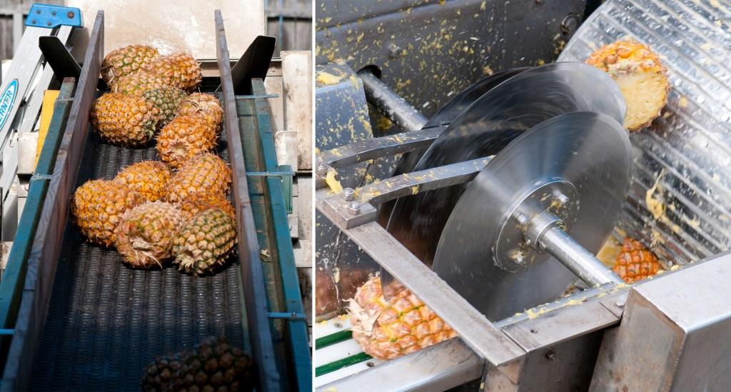 Fruit Wine-Maui Wine-Pineapples