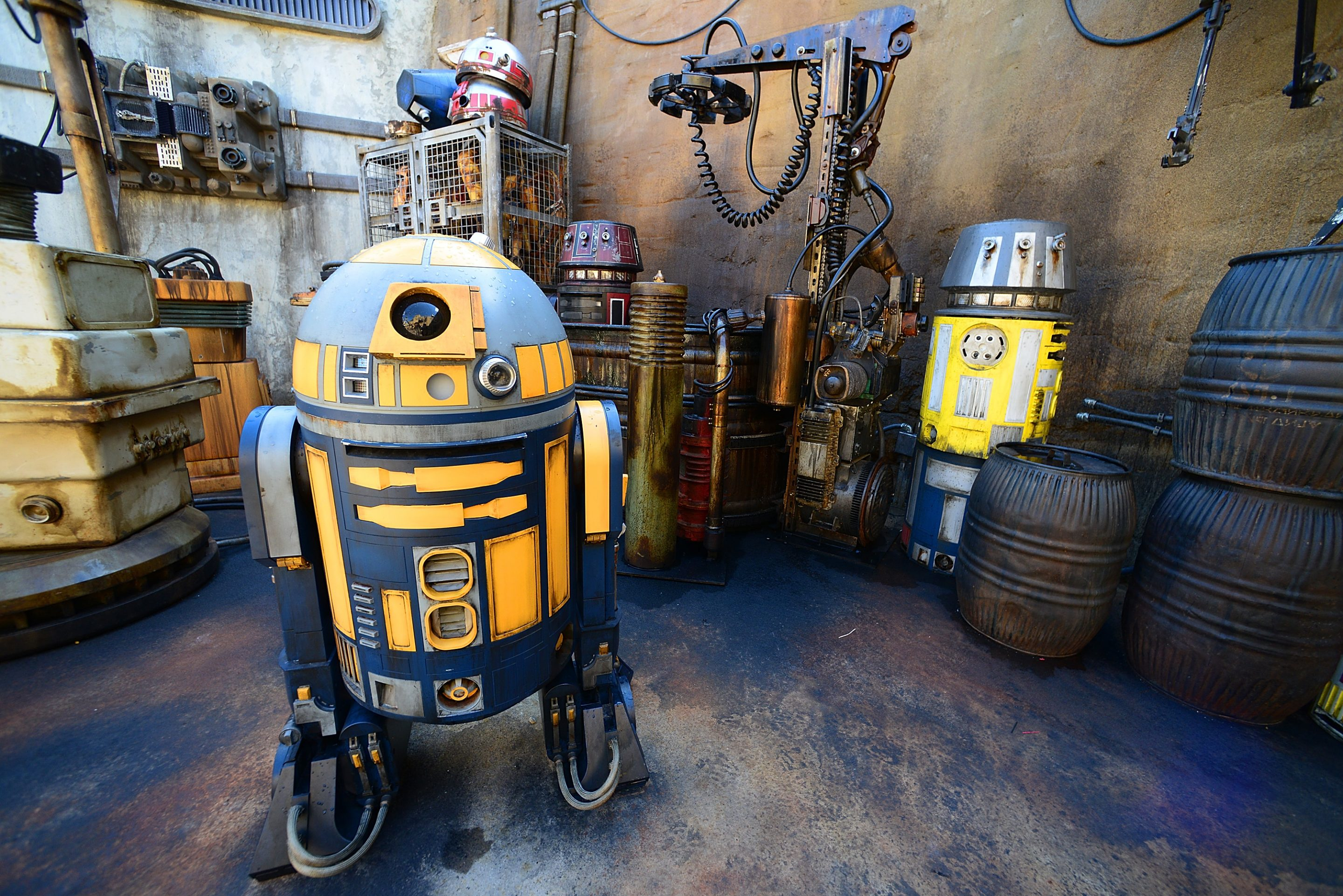 Star Wars: Galaxy's Edge Walt Disney World Resort Opening