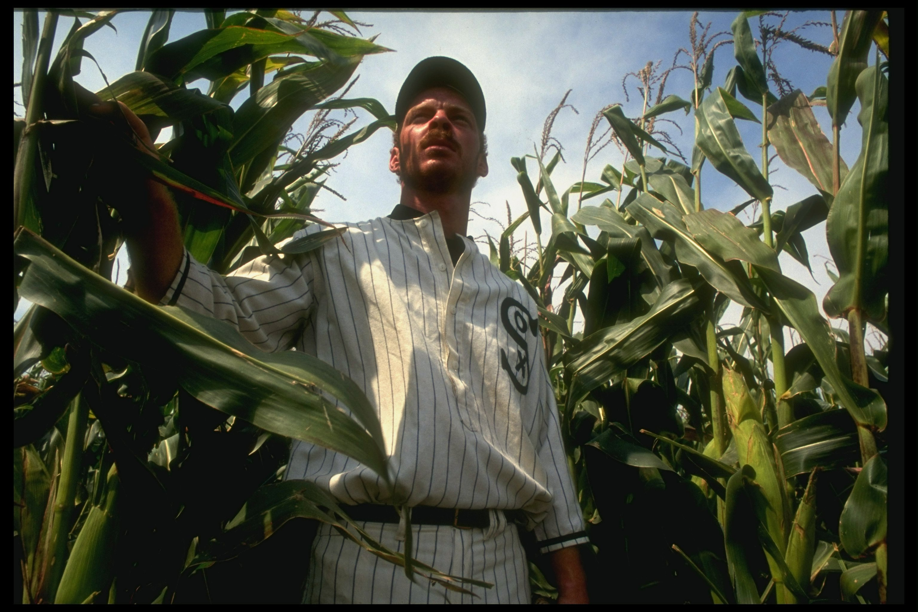 "A man in a vintage Chicago White Sox uniform emerges from a cornfield, re-enacting a scene from ""Field of Dreams"""
