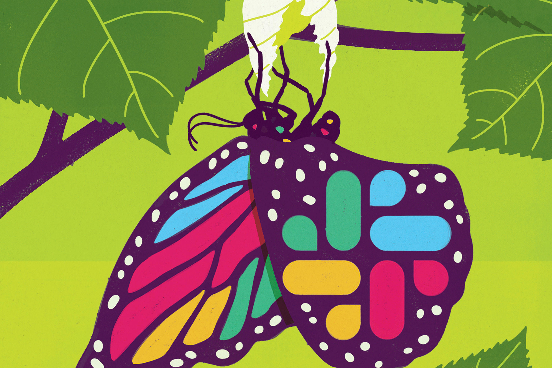 SLA09.19-Slack Butterfly