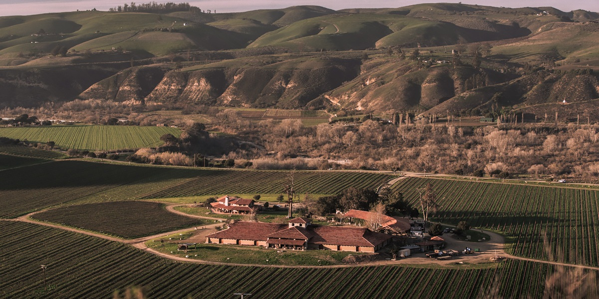Some of California's Most Famous Wines Came from a Science Experiment