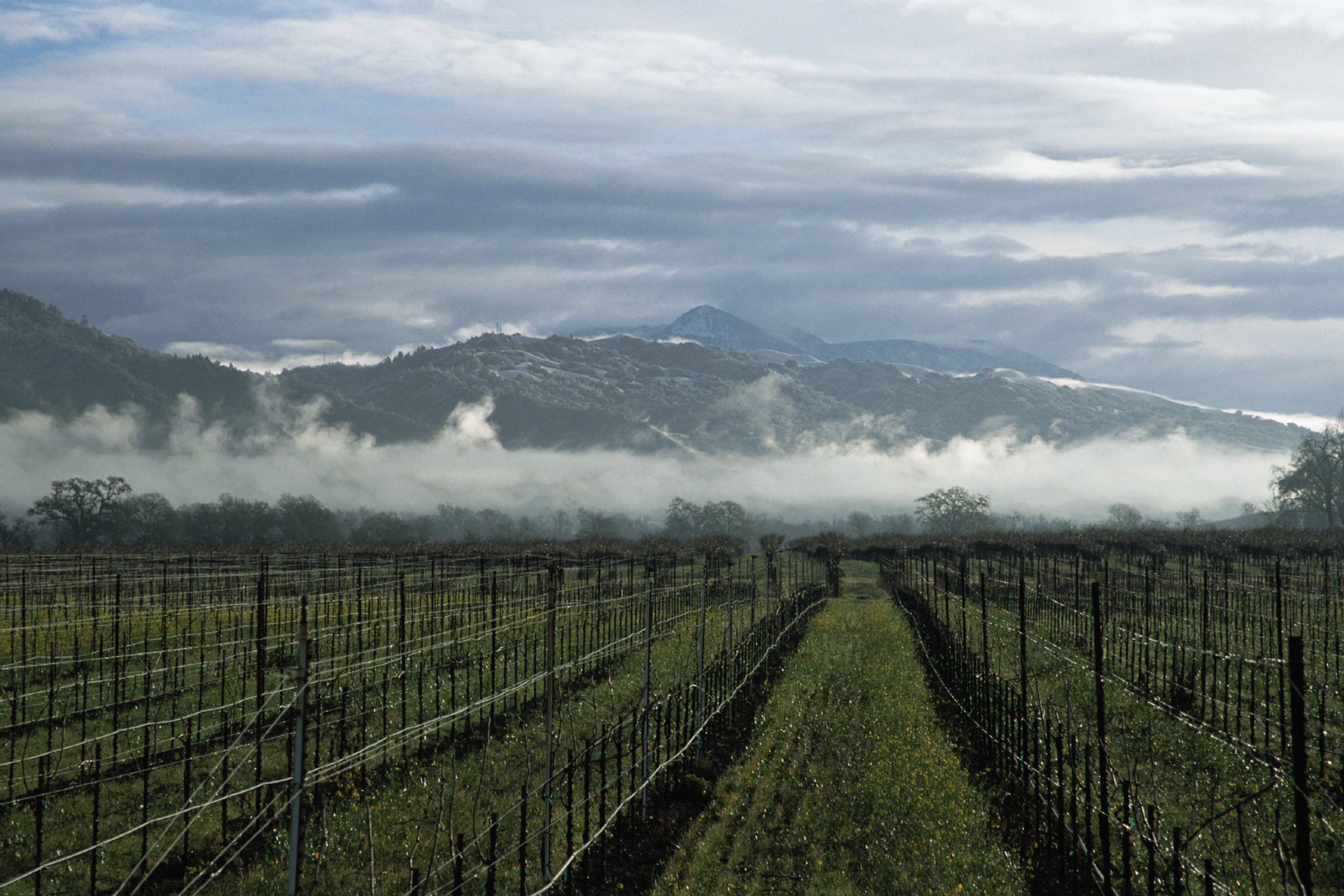 A clearing winter storm reveals the Mayacamas Mountains of Napa Valley, Calif.