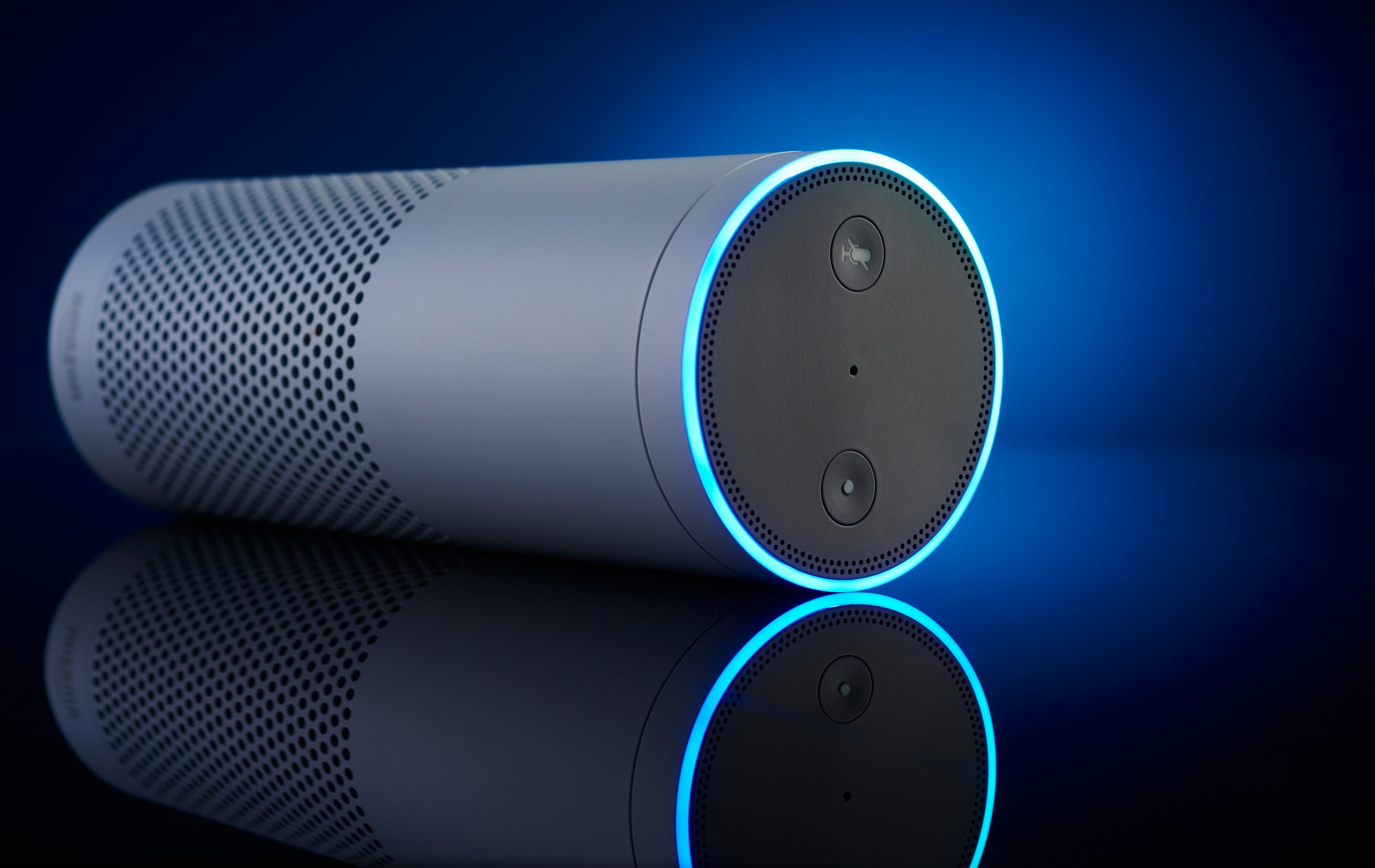 An Amazon Echo multimedia smart speaker, controlled with the Alexa voice assistant. Experts fear malicious trolls will figure out how to misuse Amazon's new crowdsourcing portal.