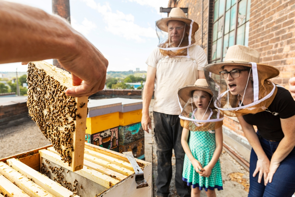 Airbnb Animal Experiences-Urban beekeeping