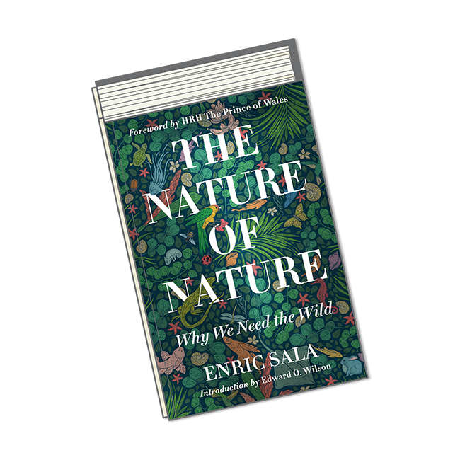 August Books-Nature of Nature