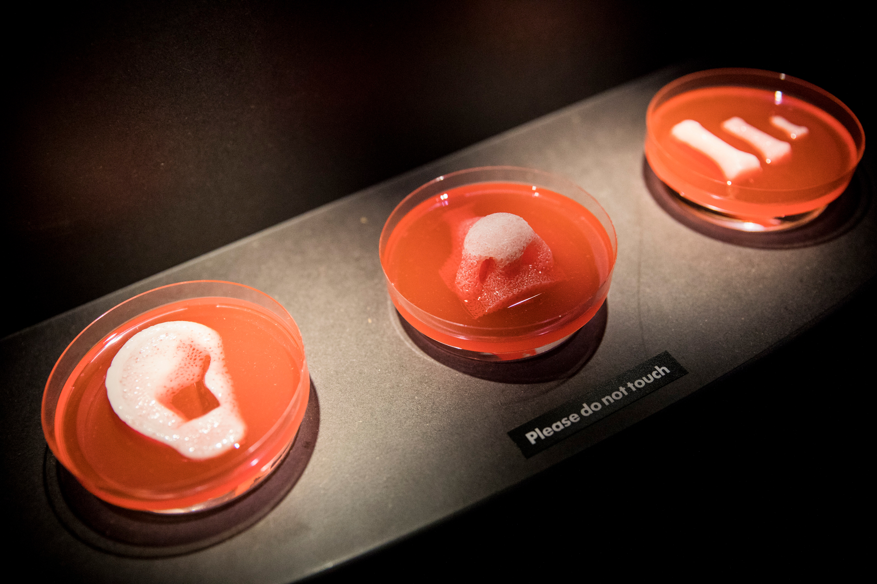 Eyeballs, asthmatics, and 3D-printed organs: New discoveries about COVID-19 abound thumbnail