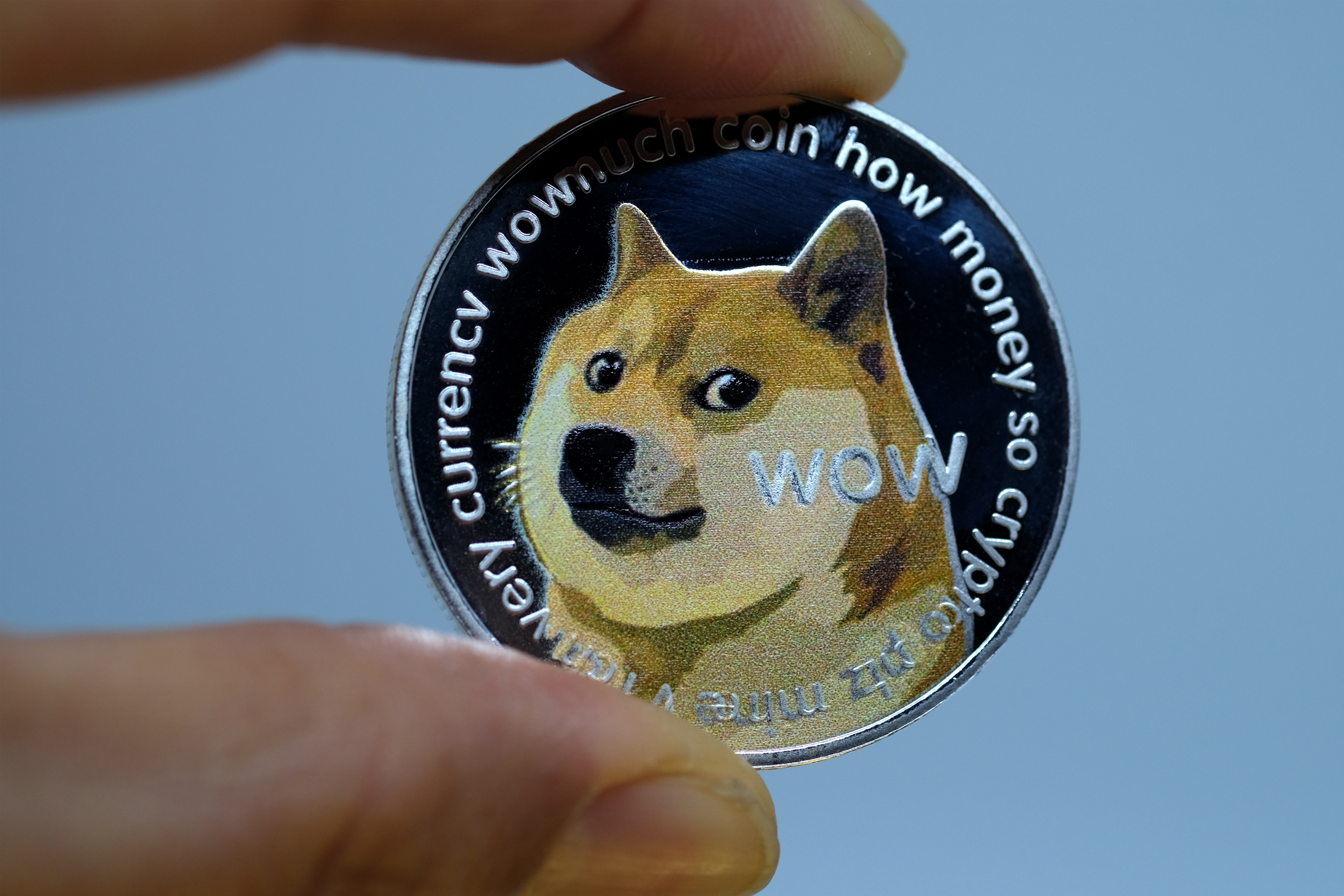Dogecoin Is It Bad Fortune
